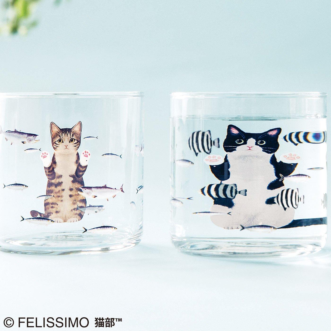 【2個セット】おいしそうだニャ~ 猫さん夢の水族館グラスの会