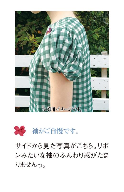 これは参考画像です。サイドから見た写真がこちら。リボンみたいな袖のふんわり感がたまりません。