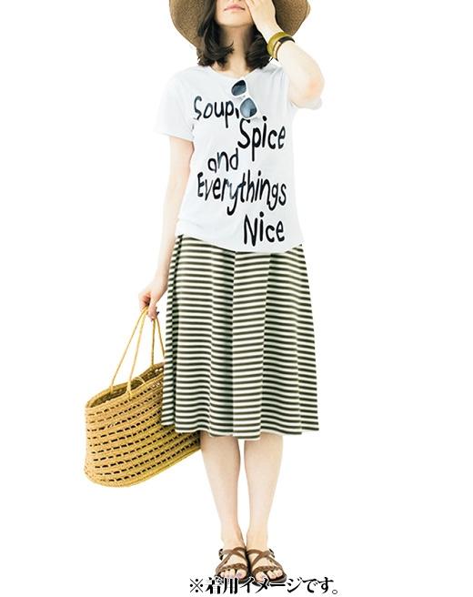 これは参考画像です。スカートを着まわし。