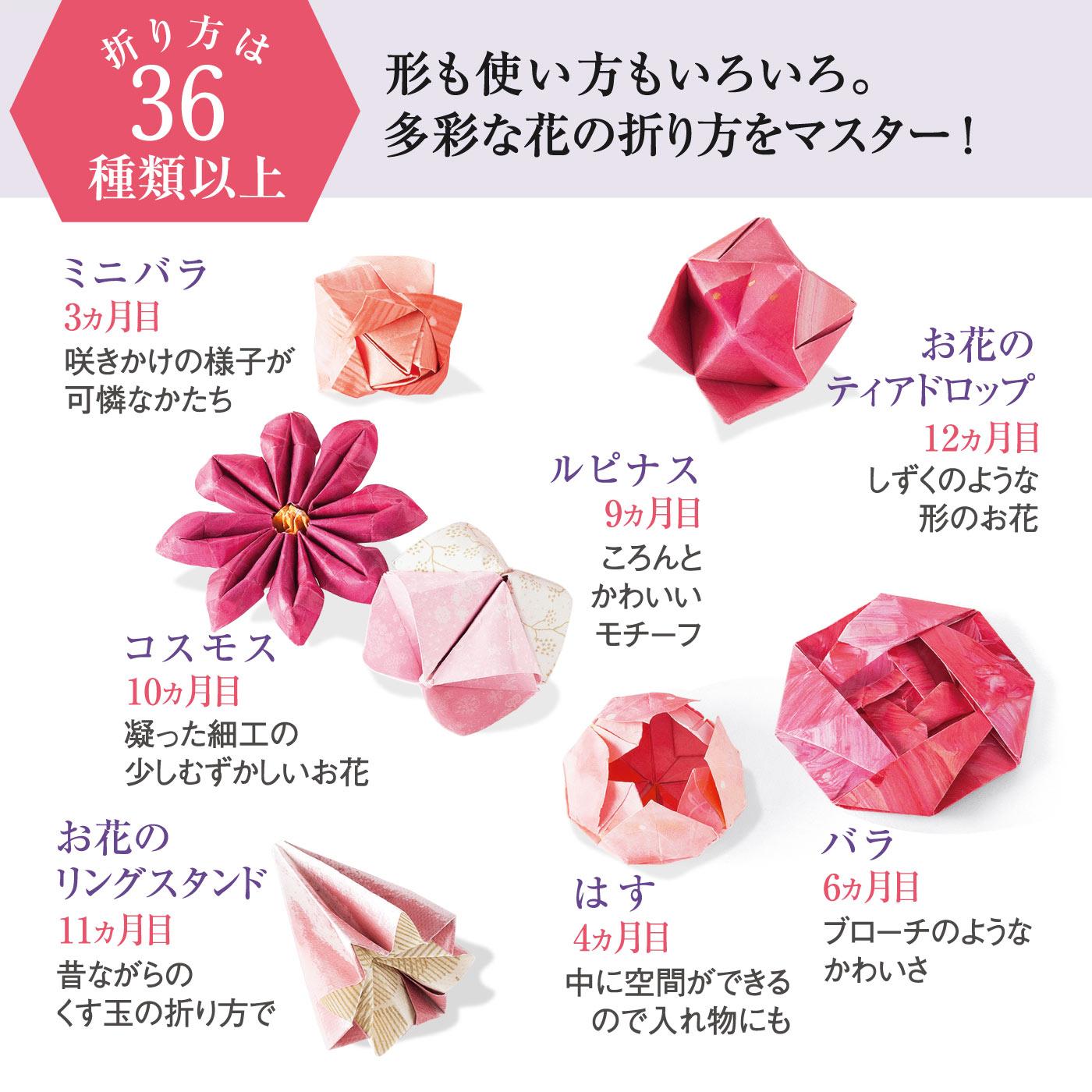 毎月3~4種類、12ヵ月で36種類以上の花オリガミをマスターできます。