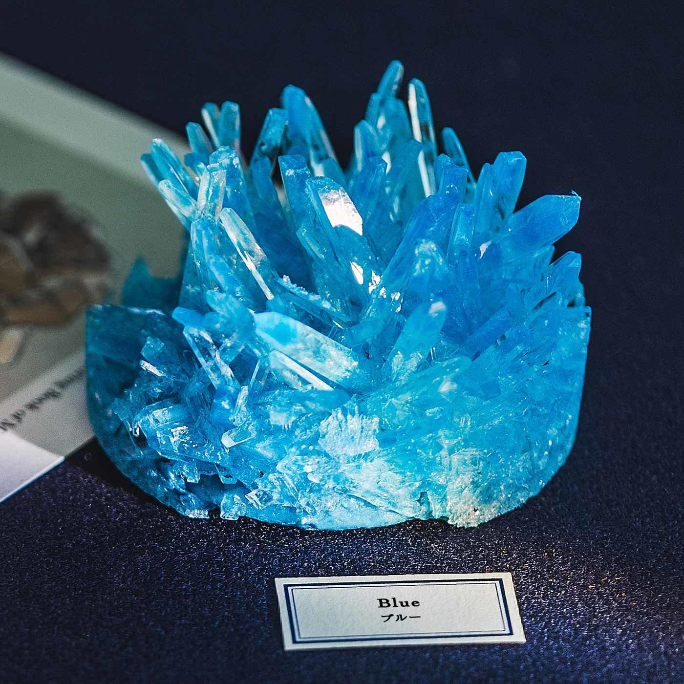 自分だけの結晶を育てよう 結晶育成キット〈ブルー〉