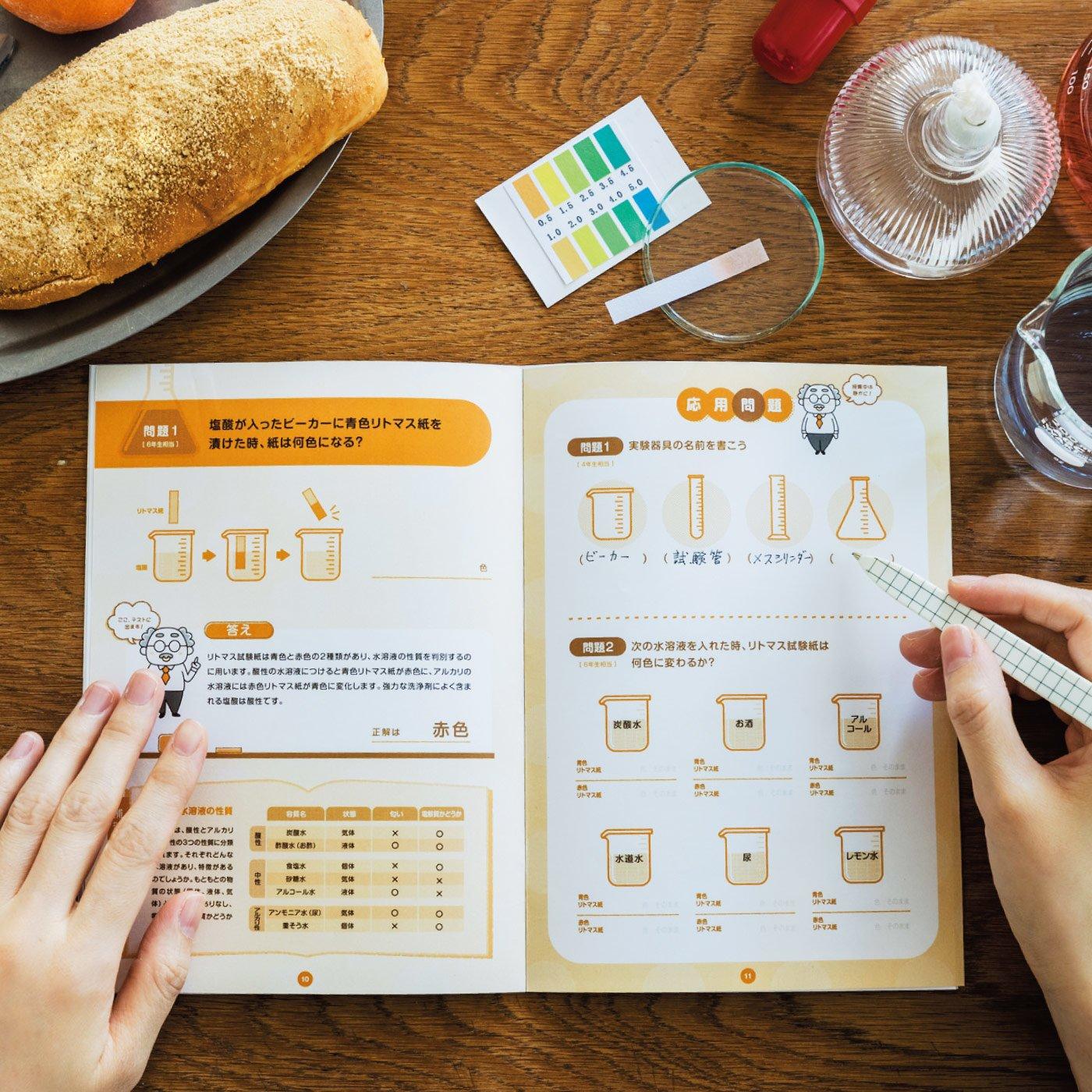 国語・算数・理科・社会 大人の学び直しプログラム [6回予約プログラム]