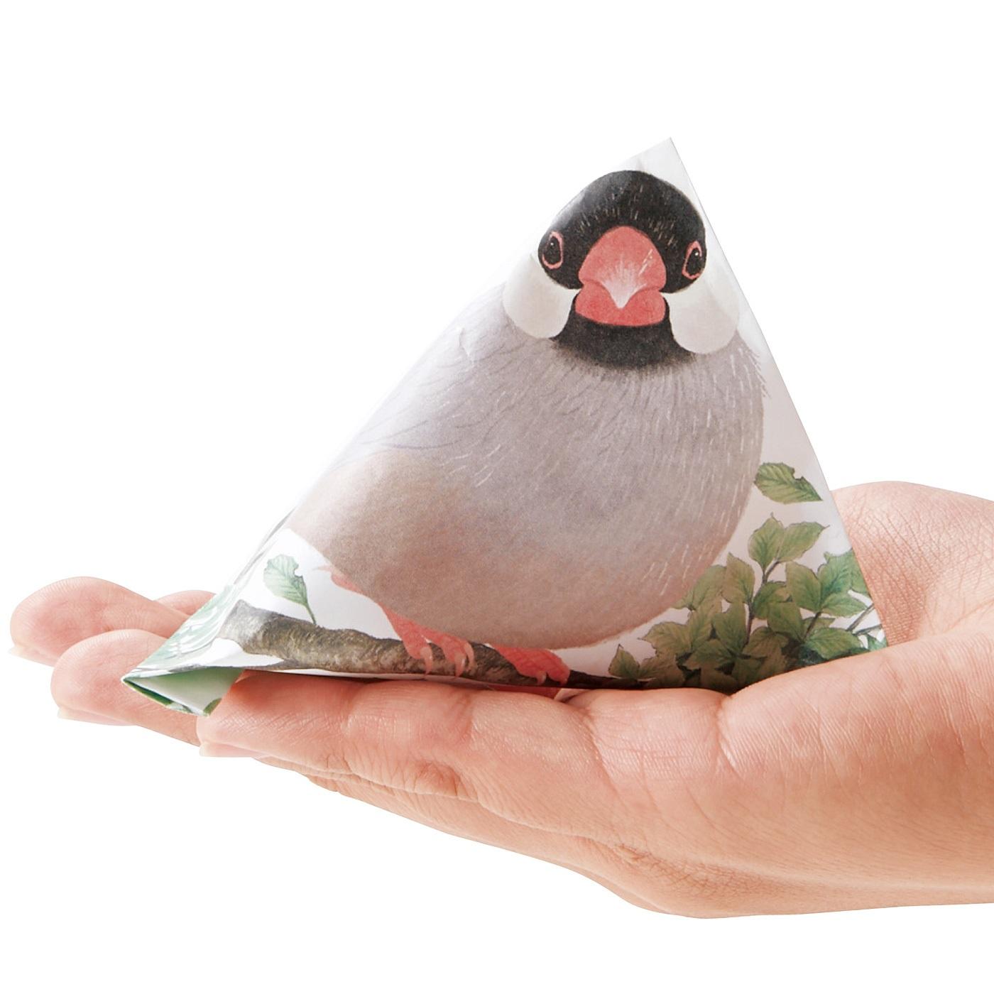 桜文鳥 テトラ折りするとちょこんと手乗り