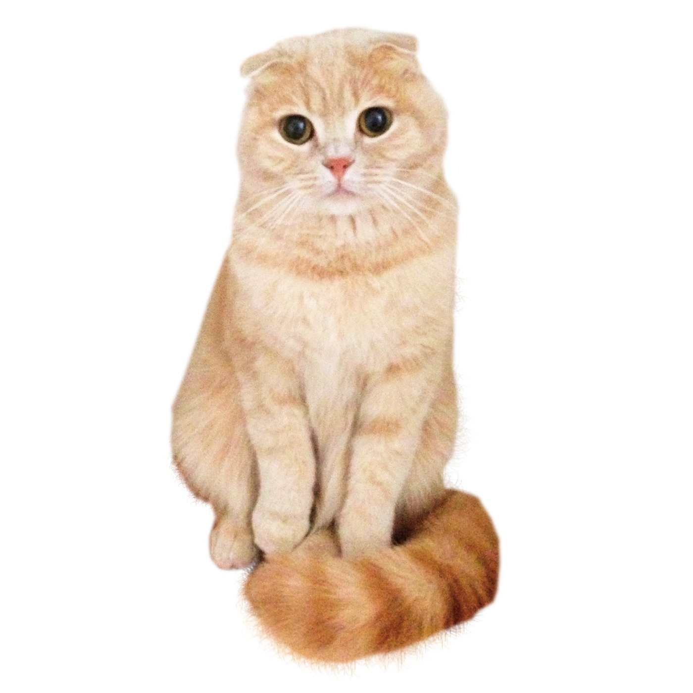 寒がり猫のしぐさ「しっぽマフラー」をイメージ。