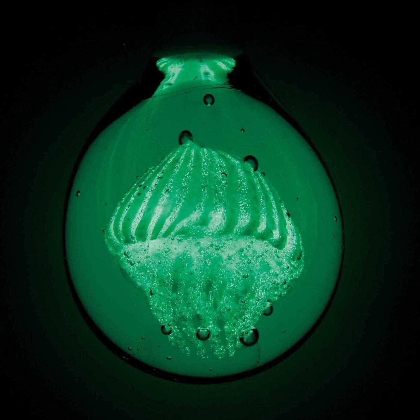 オワンクラゲは暗闇で光る蓄光ガラス!