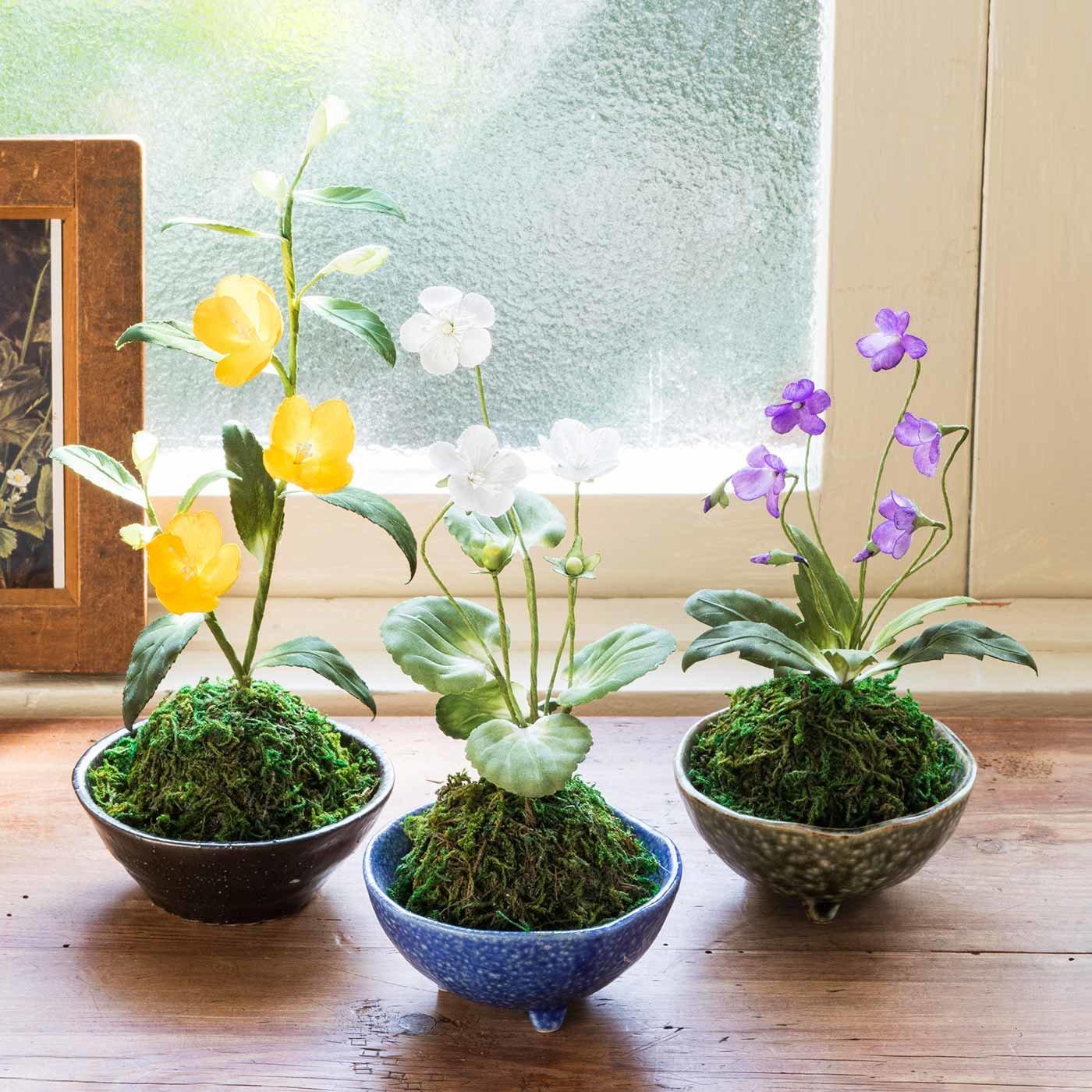 可憐に咲く小さなお花に癒やされる 手づくりの和の鉢植え