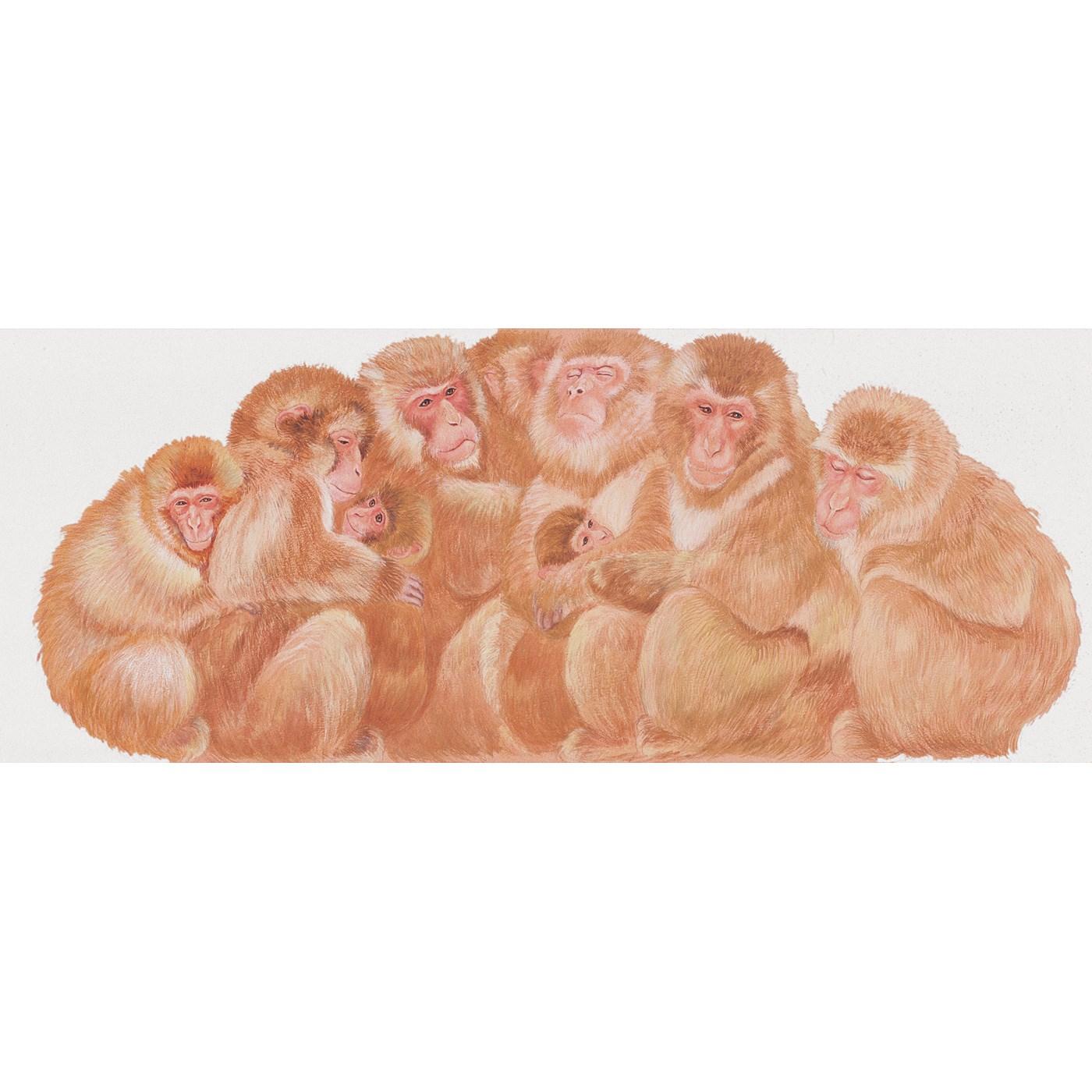 「サルだんご」って? 寒い季節、身を寄せ合ってからだをあたため合うニホンザルの姿をたとえたもので、日本の冬の風物詩。いちばんあたたかいセンターポジションを陣取るのは、ボスザルなんだって。
