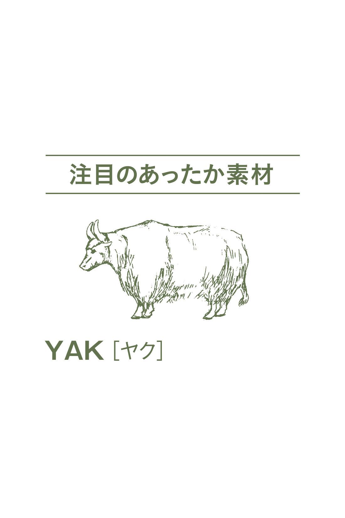 標高4000メートル以上の高地に住む、寒さに強い牛の一種。その毛は滑らかでやわらかく、カシミアと並ぶ注目の高級素材。