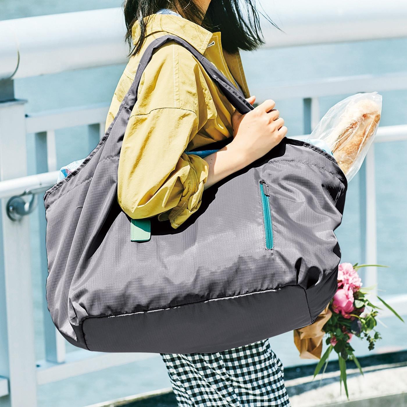 レジカゴにフィット ファスナーで目隠しできるジャンボなマイバッグ