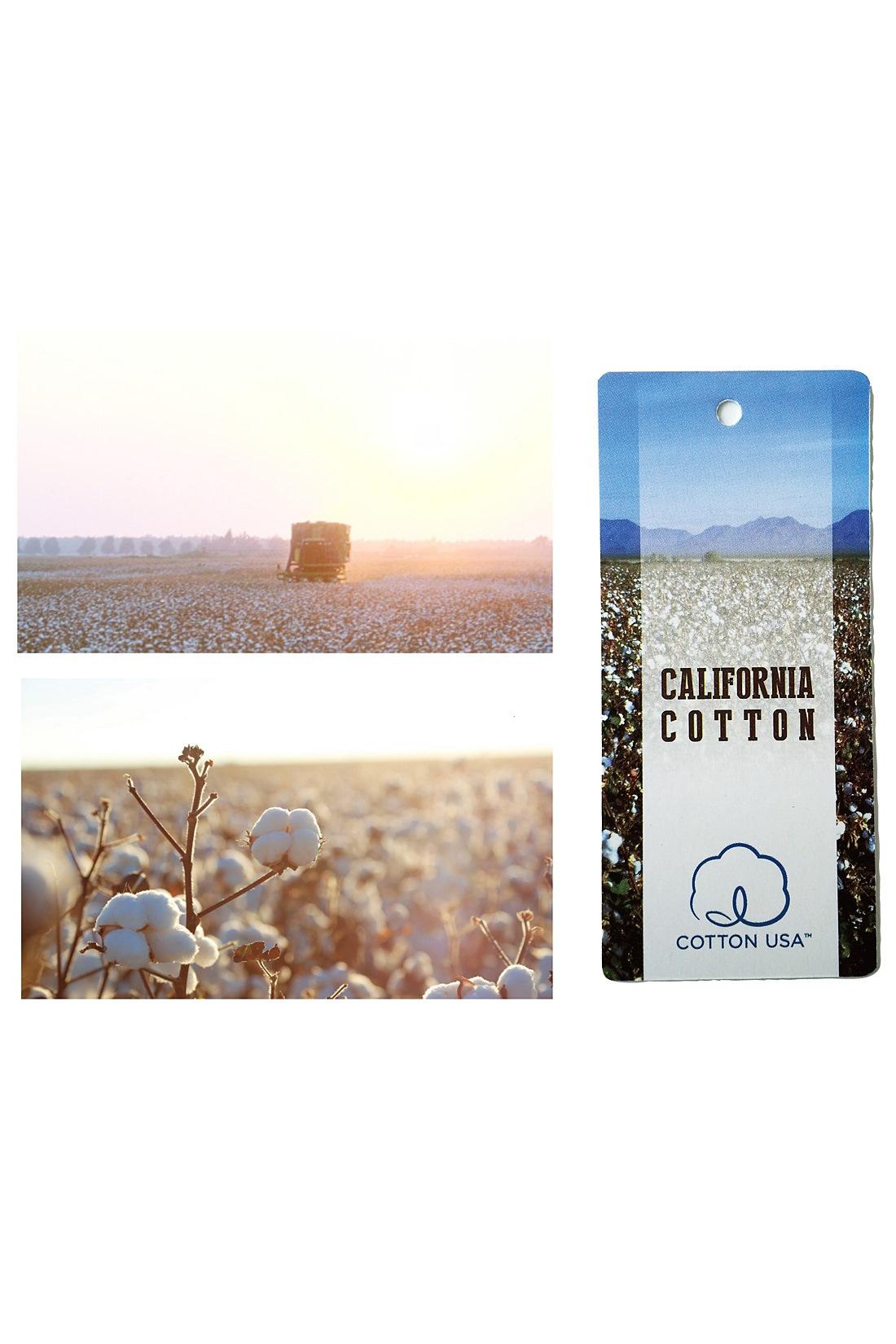 米国カリフォルニア州のサンフォーキンバレー特有の、綿花栽培に適した気候がはぐくんだ上質なコットンを使用。撚りを甘くかけた糸で編み上げた、ふっくらソフトな着心地が特長です。
