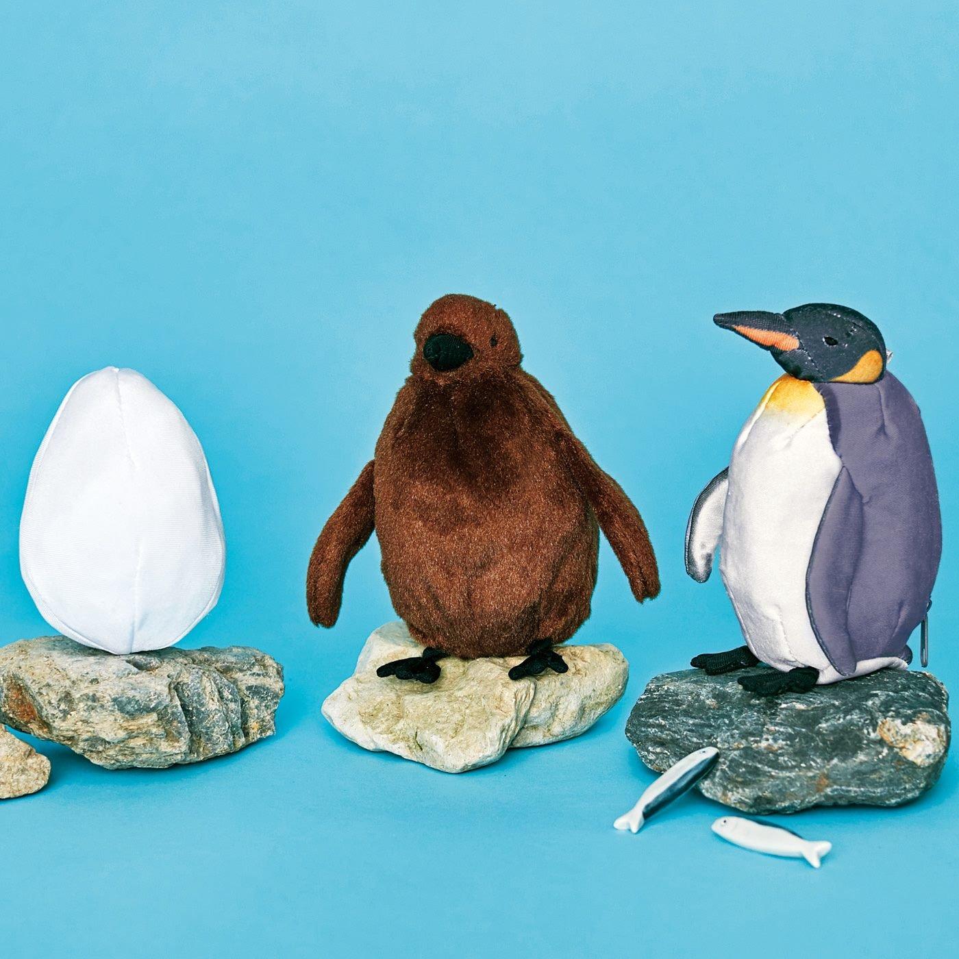 【予約】YOU+MORE! 卵→ヒナ→成鳥に!?  オウサマペンギン3変化ぬいぐるみ