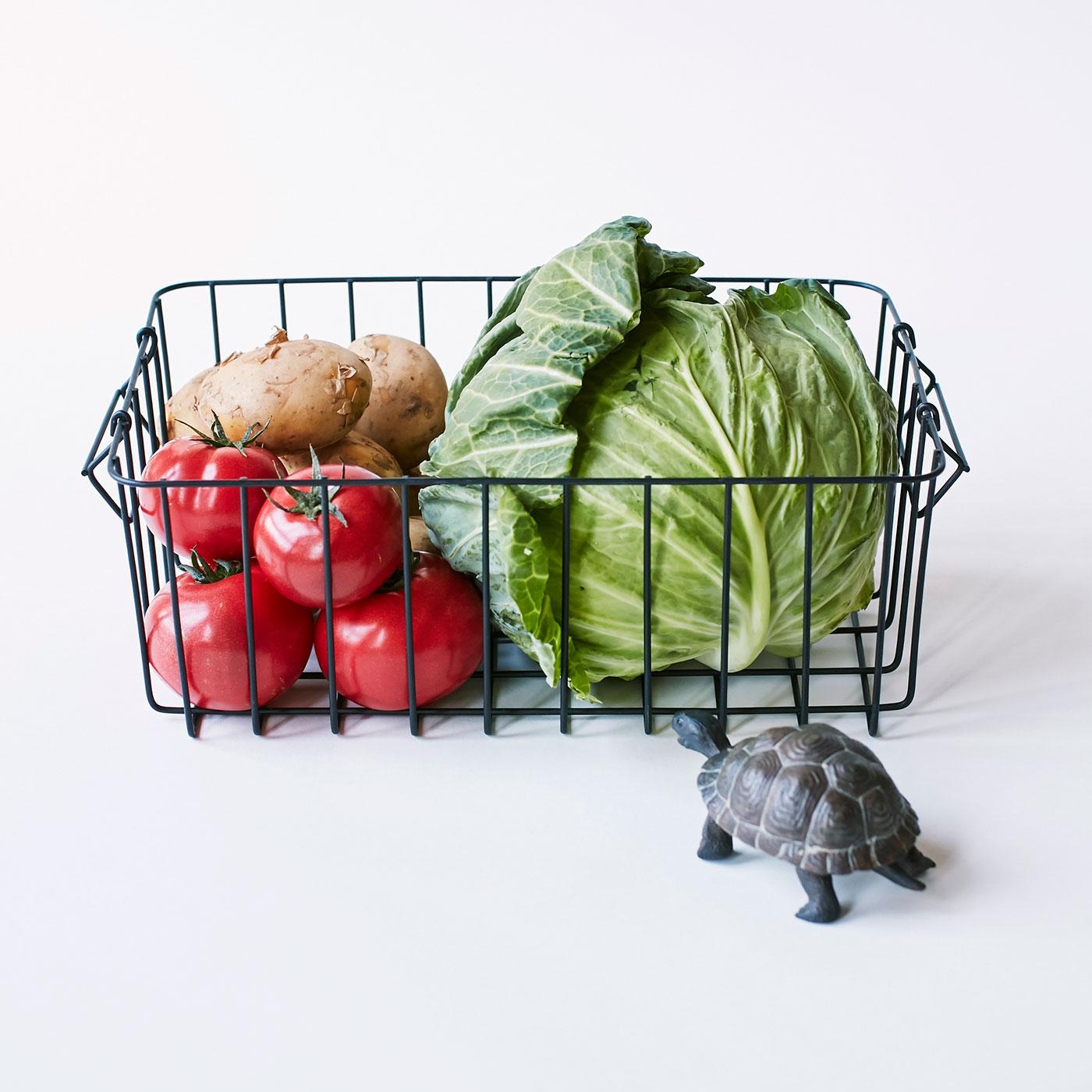 <例えばこんなことが身に付きます>スーパーでの新鮮な野菜の見分け方