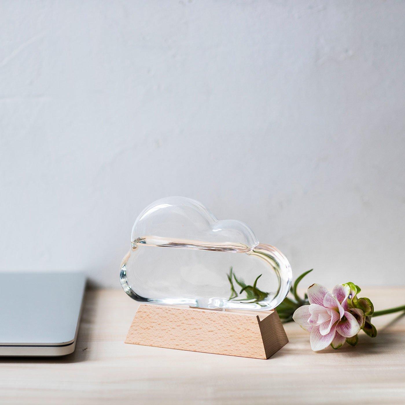 結晶の変化が楽しみに 雲形のガラスがかわいい ストームグラス
