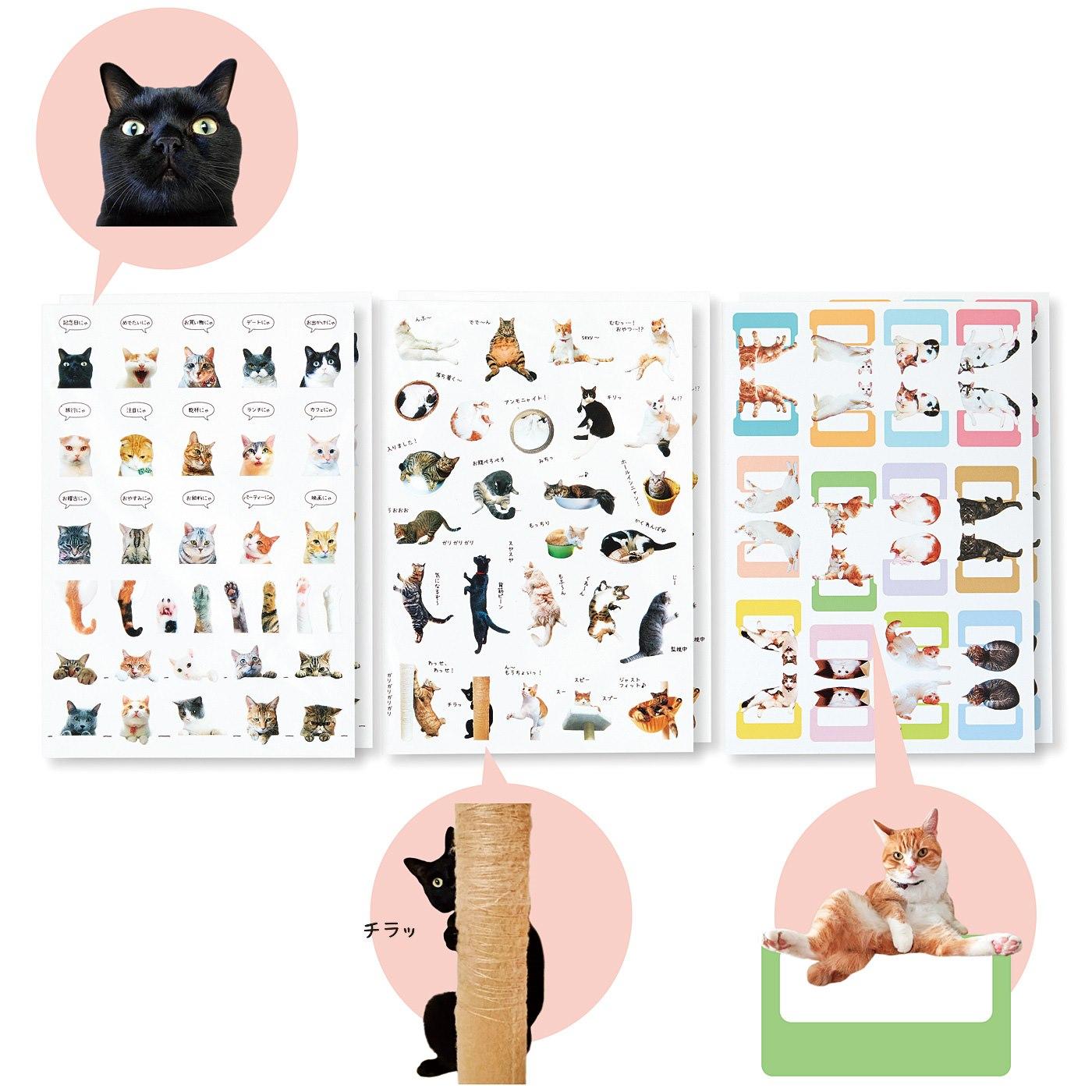 「猫部トーク」の猫さんたちとつくった手帳であそぶ猫シールの会