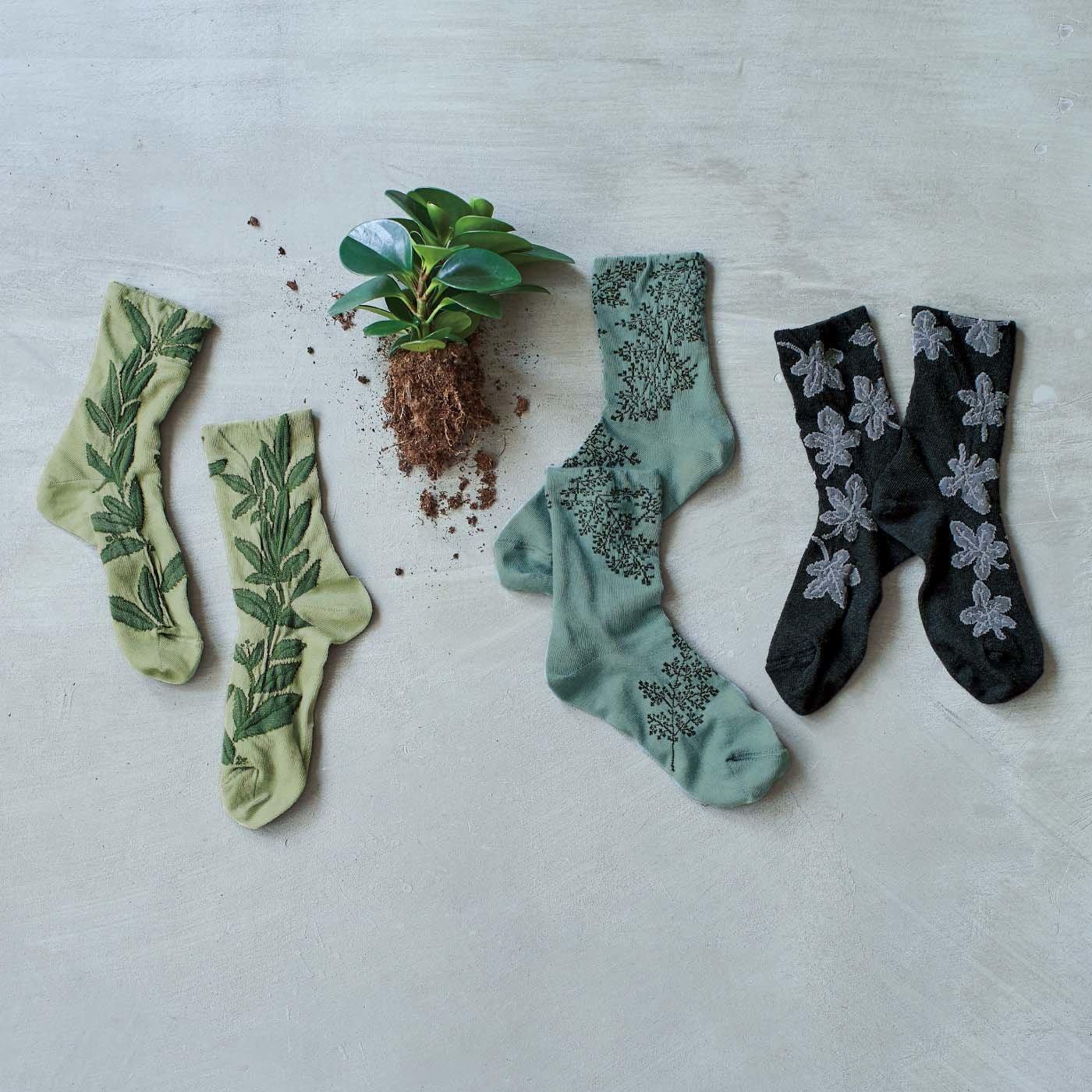 el:ment×Yuko Yamamoto 植物モチーフがゆったり紡ぐ 肌側上質シルクが心地よい薄手二重編み靴下の会