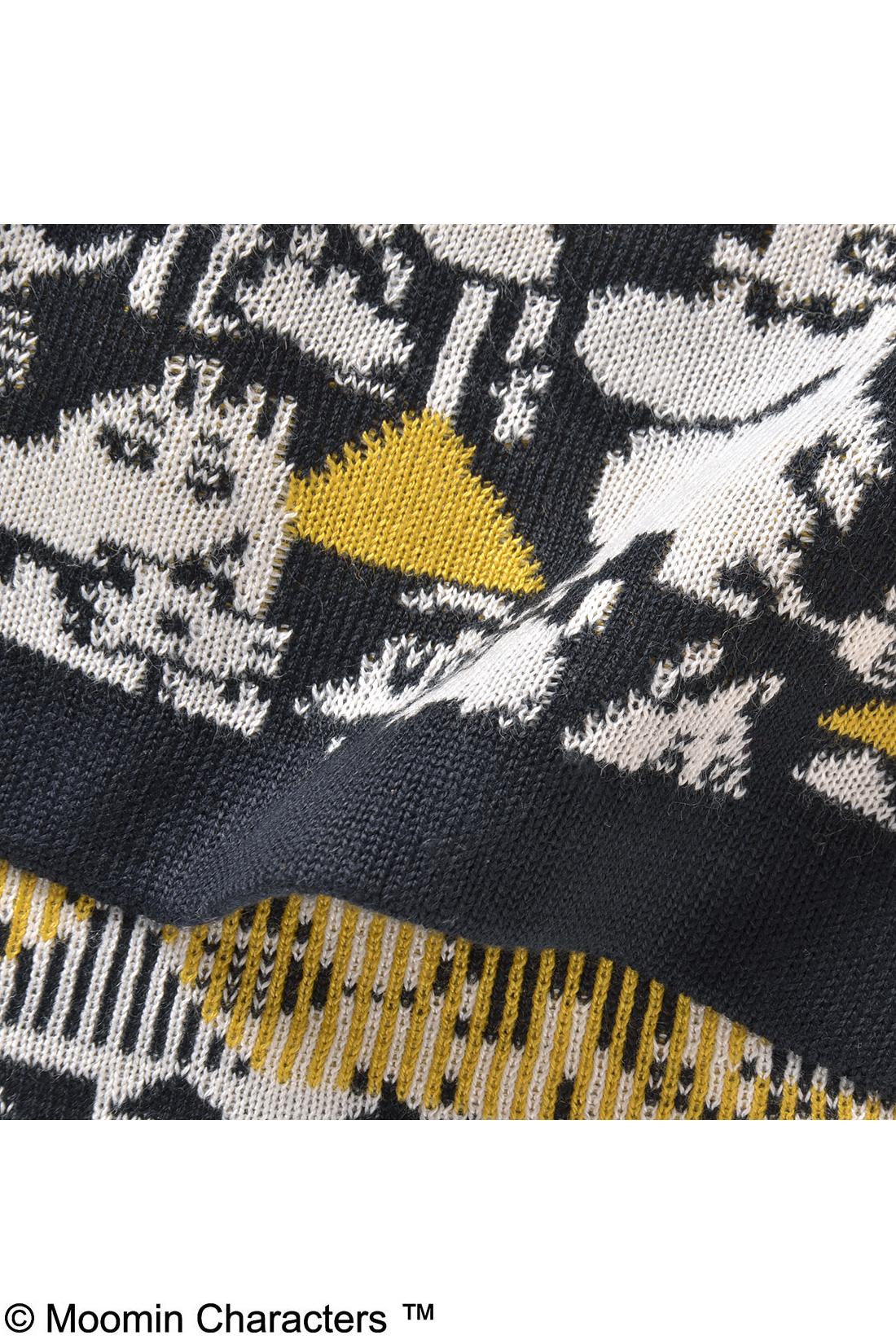 ムーミンと仲間たちをジャカード編みで表現した力作。ファニーな表情がかわいいね。