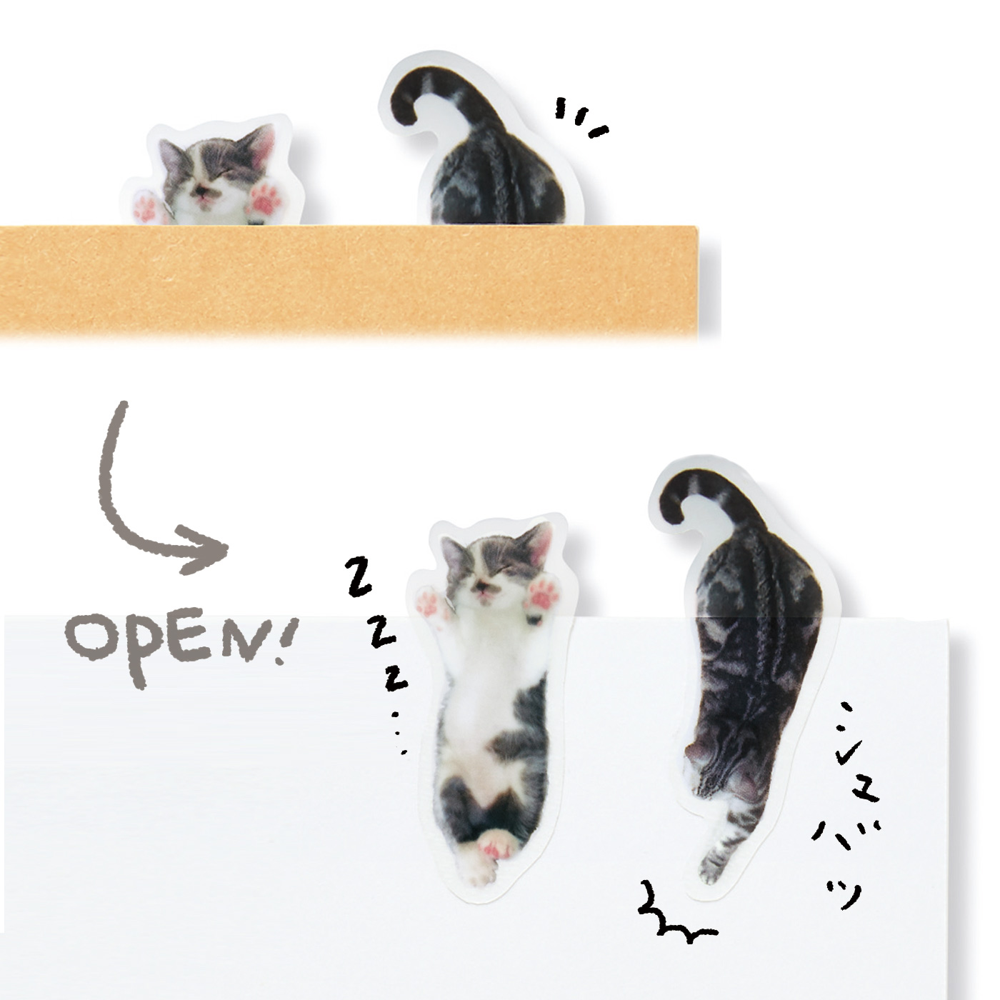 開けると……猫 チラリと見える猫さんの体。開くと、寝ていたり本の内容に飛びついていたり。