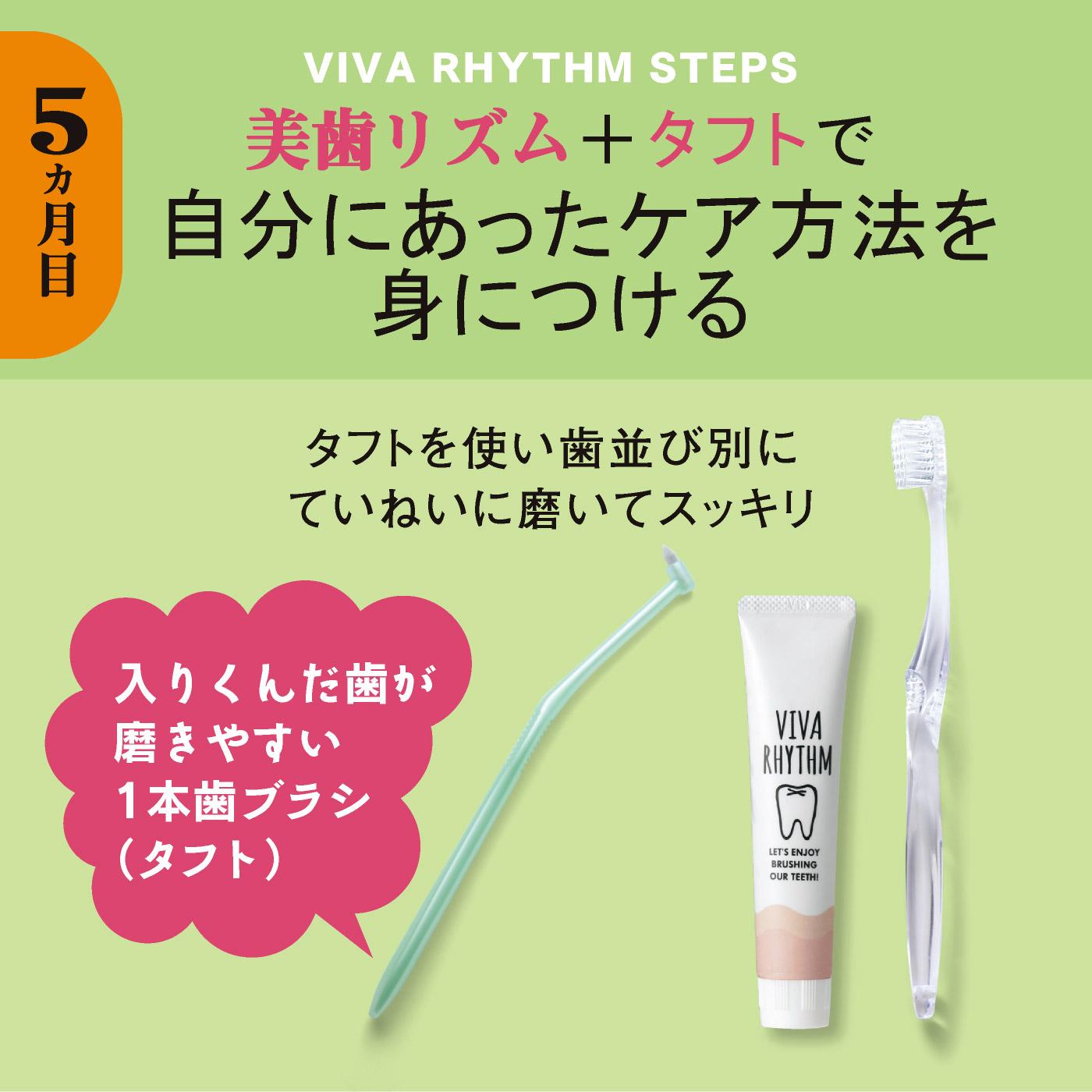 5ヵ月目)美歯リズム+タフト