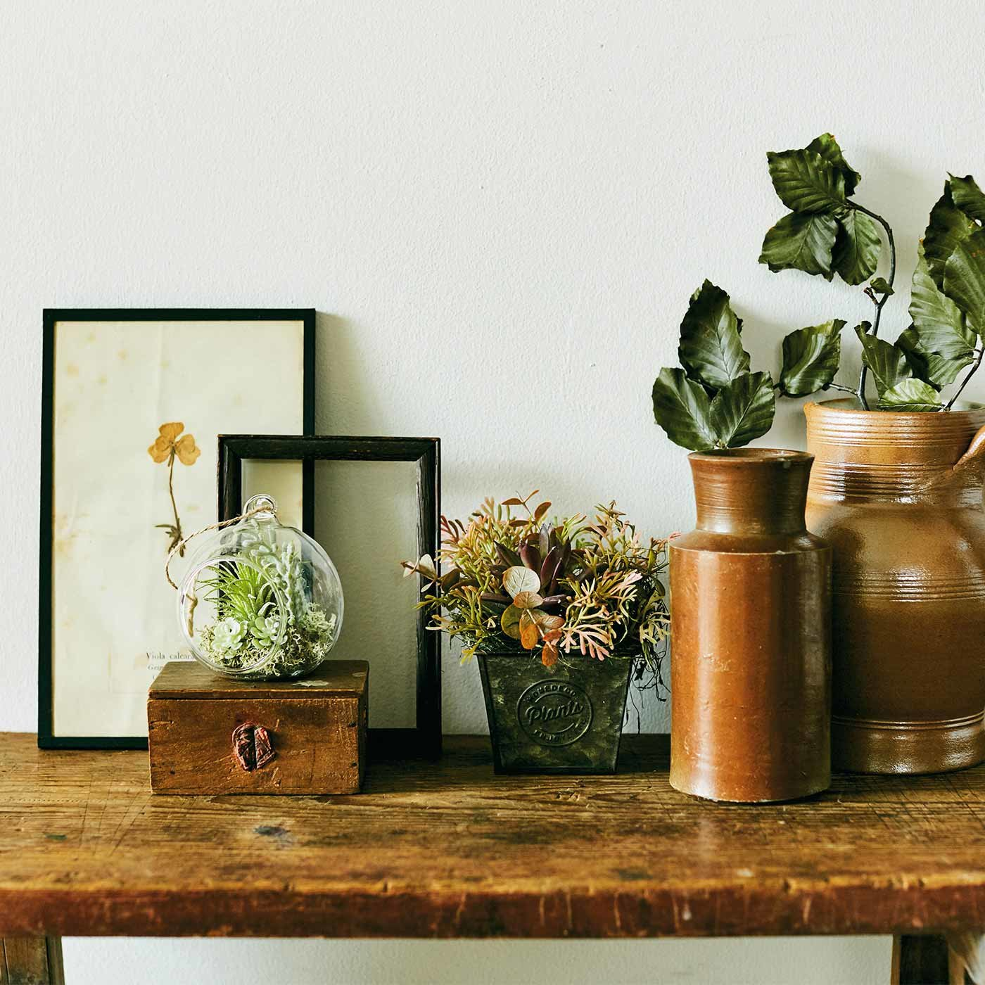 お部屋が癒やしの空間に つるしたり置いたり グリーンアレンジメントの会