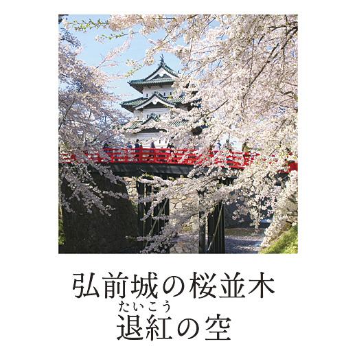 弘前城の桜並木退紅の空