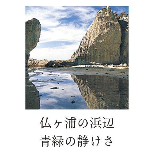仏ケ浦の浜辺青緑の静けさ