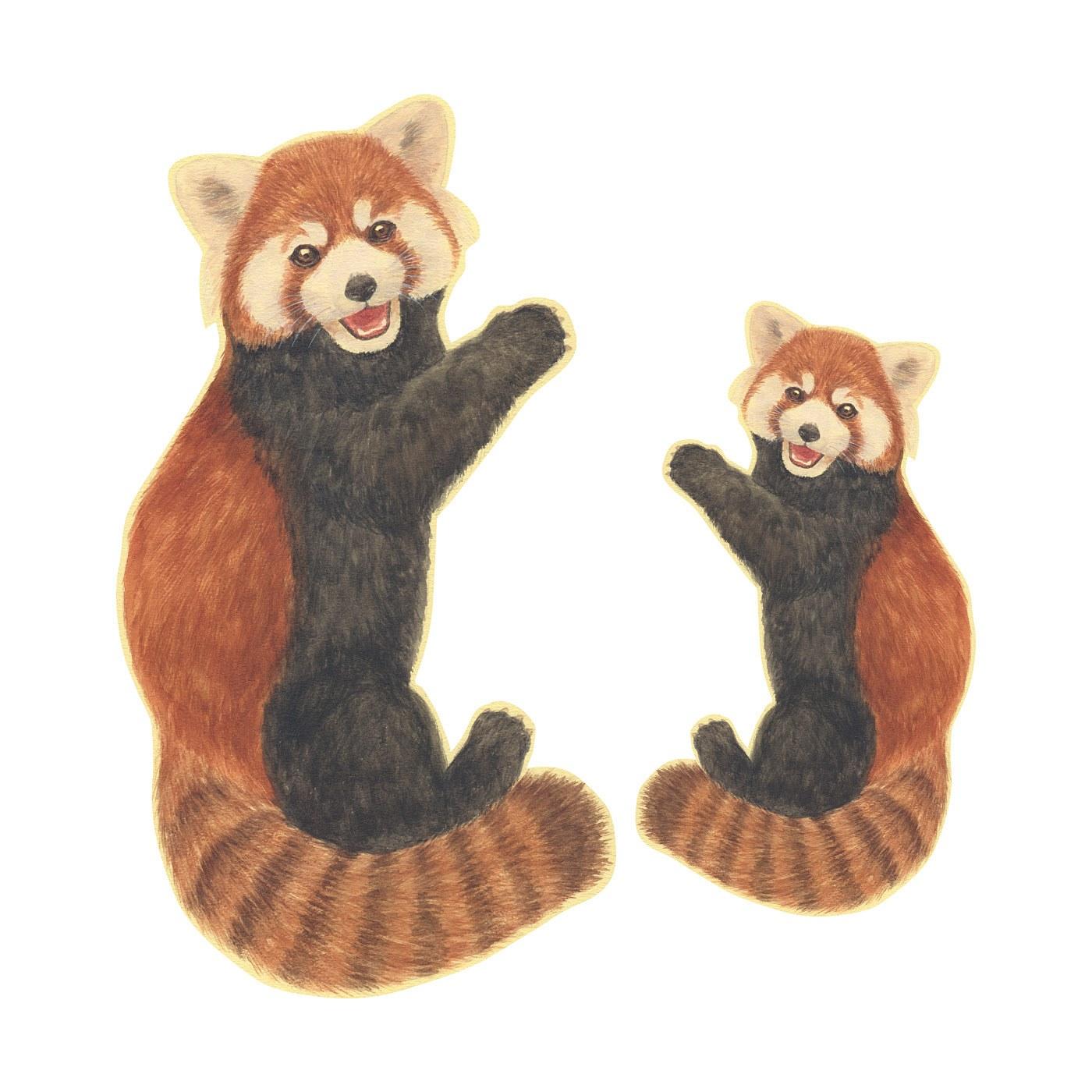 〈レッサーパンダ〉 ●大小セットでお届けです。