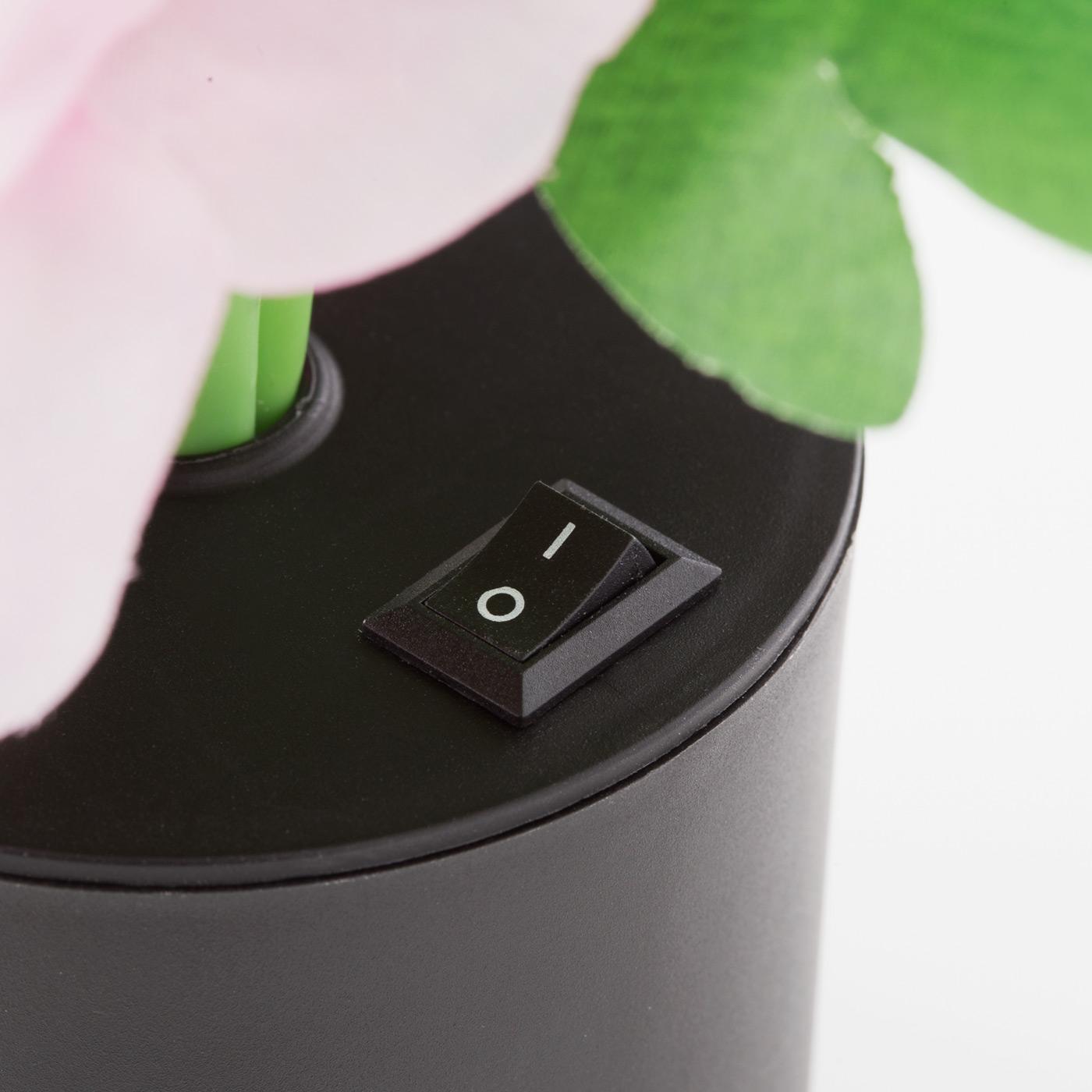 花の根もとの主電源をONにしてから、リモコンで操作します。