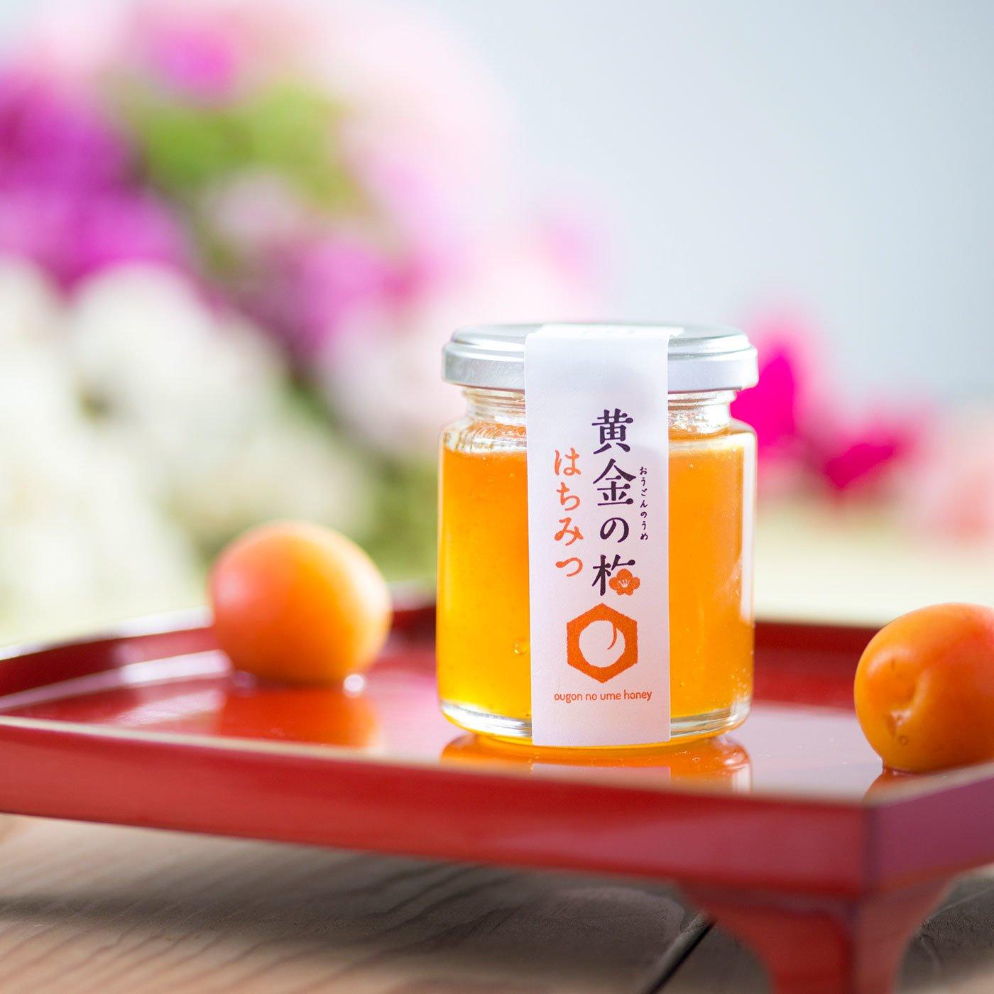 福井県産 完熟梅でつくった黄金の梅はちみつ2本セット
