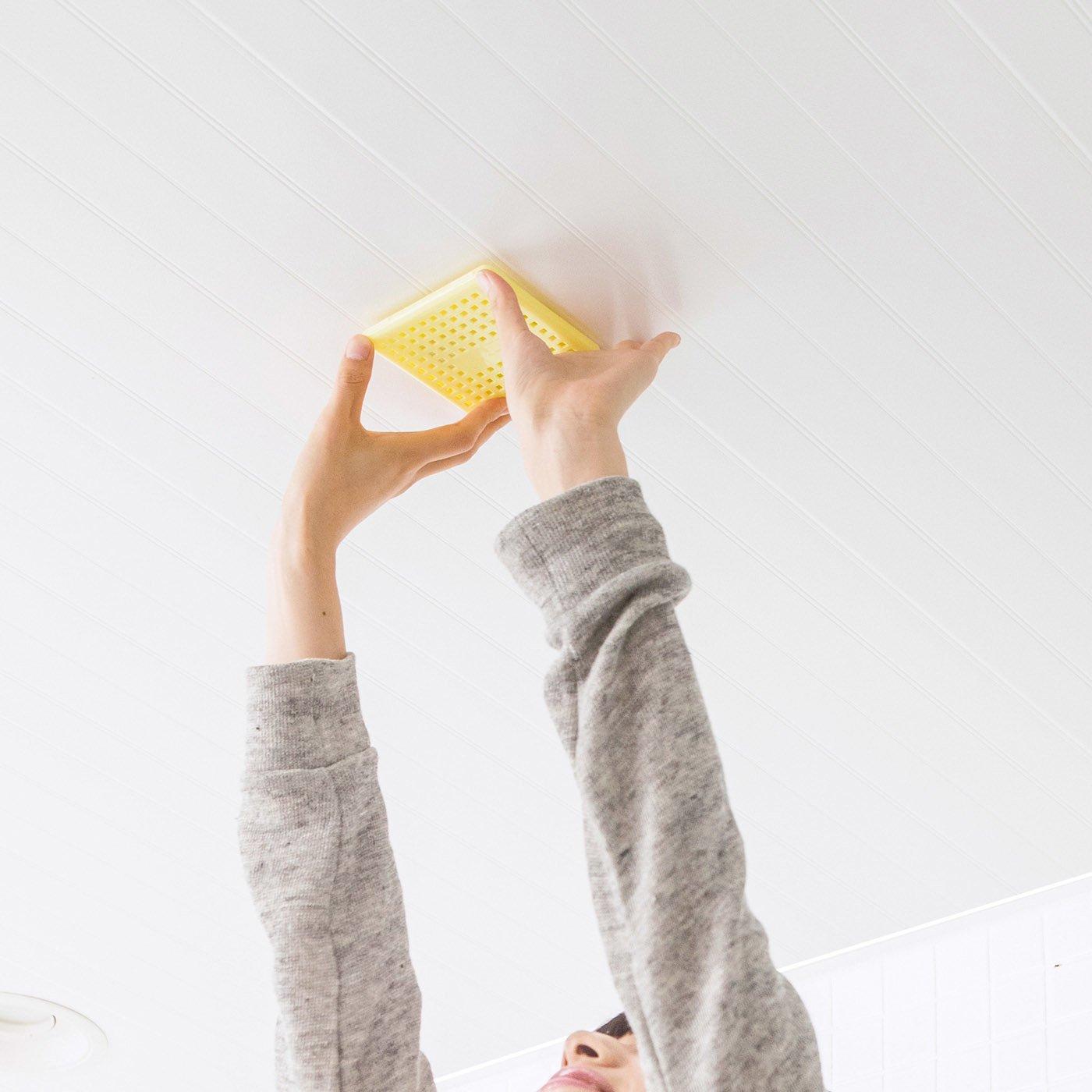 お風呂の天井に貼るだけ バイオの力 かび抑制プレートの会