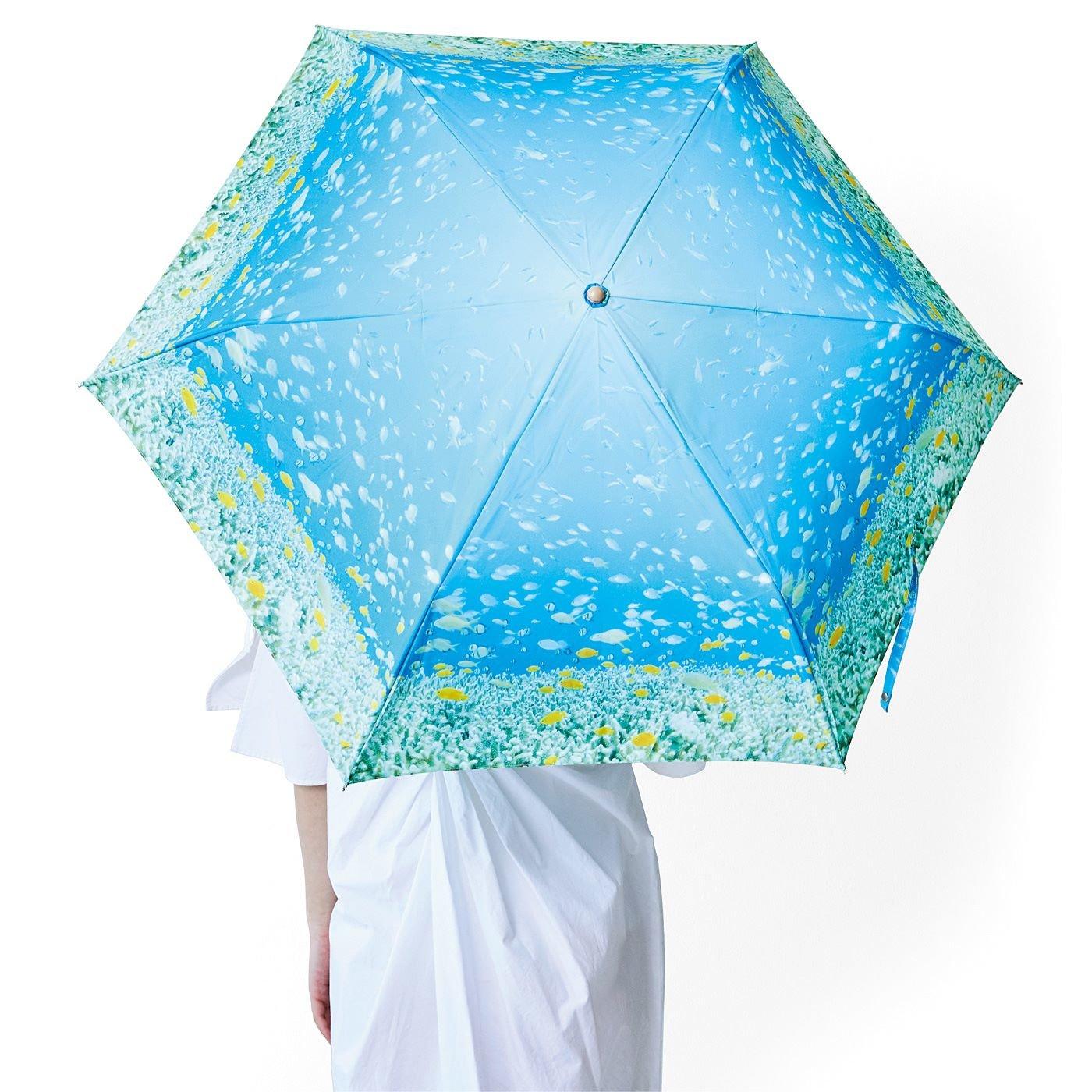 海とかもめ部 海とお出かけ 晴雨兼用傘〈おさかな〉
