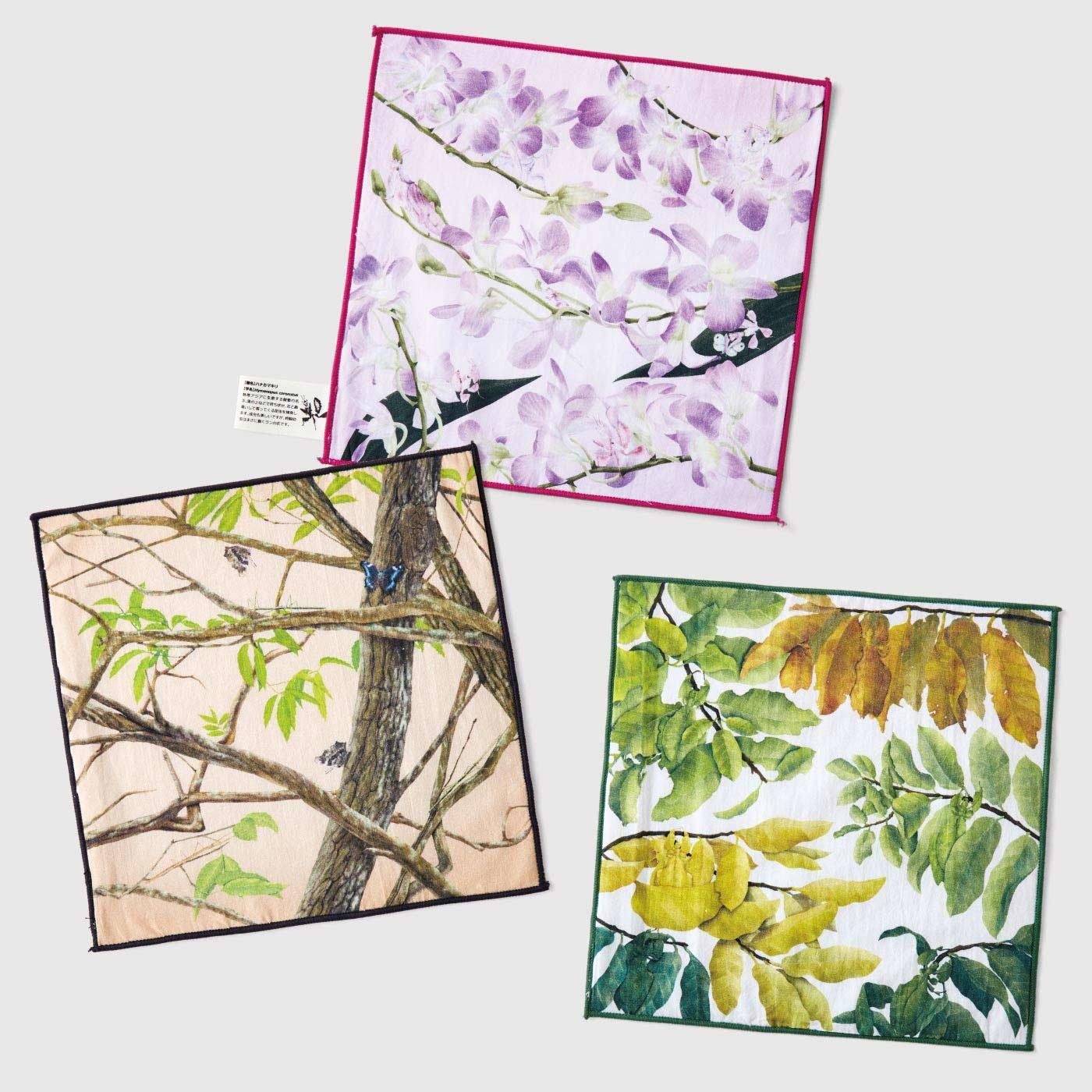 フェリシモミュージアム部 ボタニカルアートな雰囲気を楽しむ 擬態(ぎたい)昆虫ハンカチの会