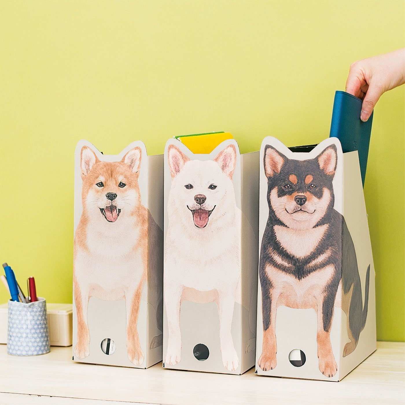 YOU+MORE! おうちでキリリとスタンバイ 柴犬おすわりファイルボックスの会