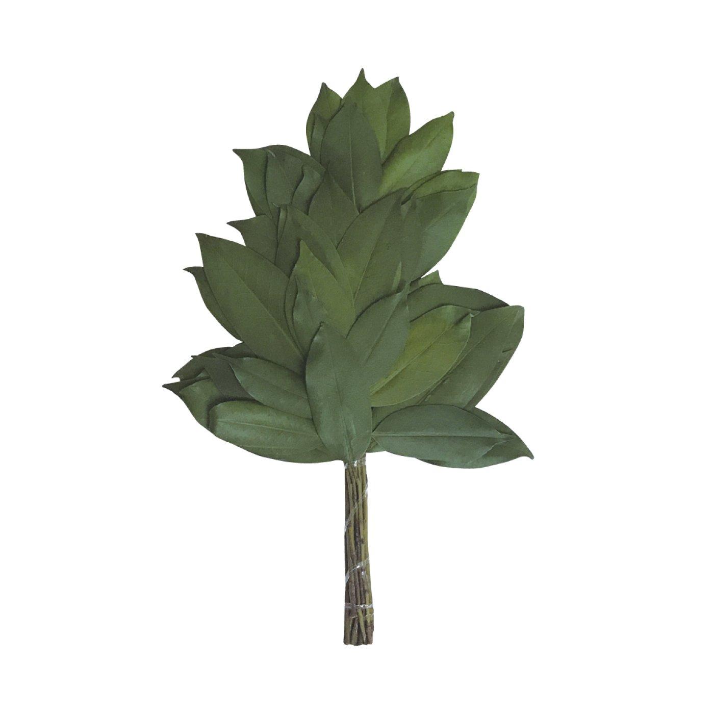 水替え不要で緑が長持ち プリザーブド榊 一束