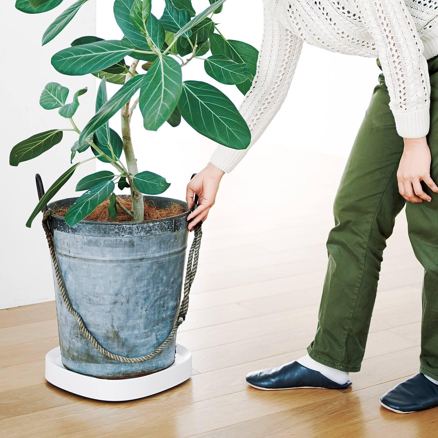 動かしにくい観葉植物の鉢も前後左右らくらく移動できます。
