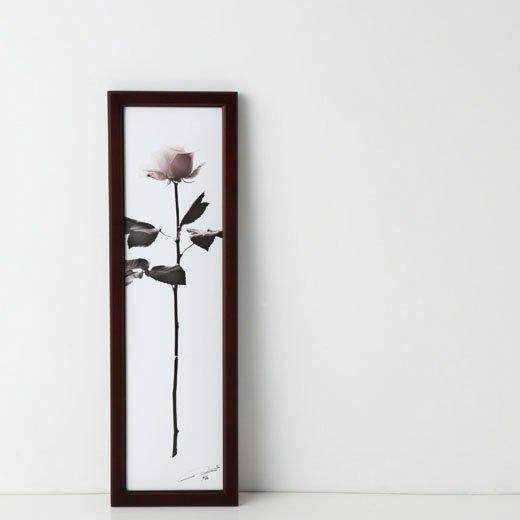 la fleur〈ANNIVERSARY rose~今までも、これからも-1〉photo:yukihito MASUURA