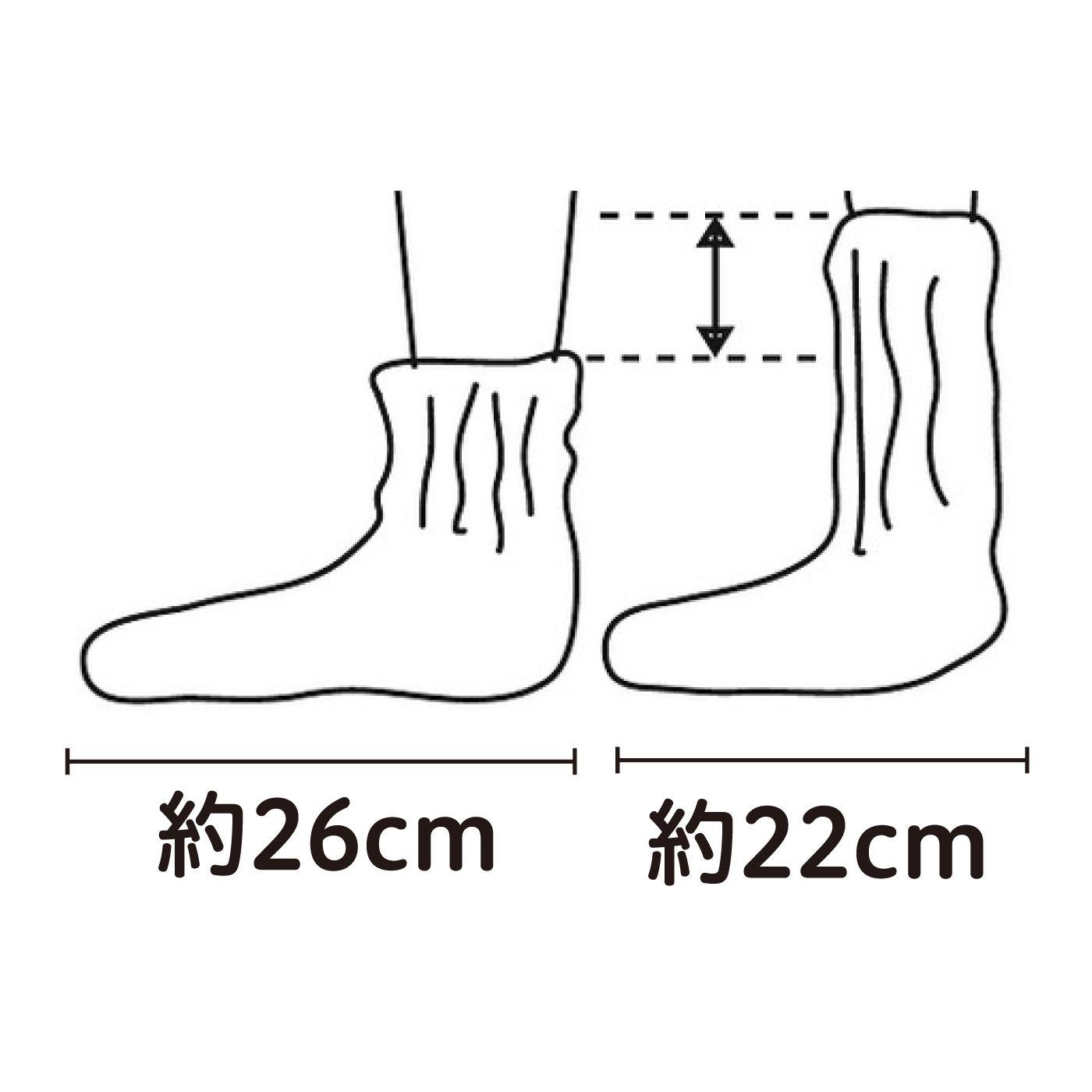 かかとがない作りだから、足のサイズや重ねばきの枚数を気にせずにはけます。