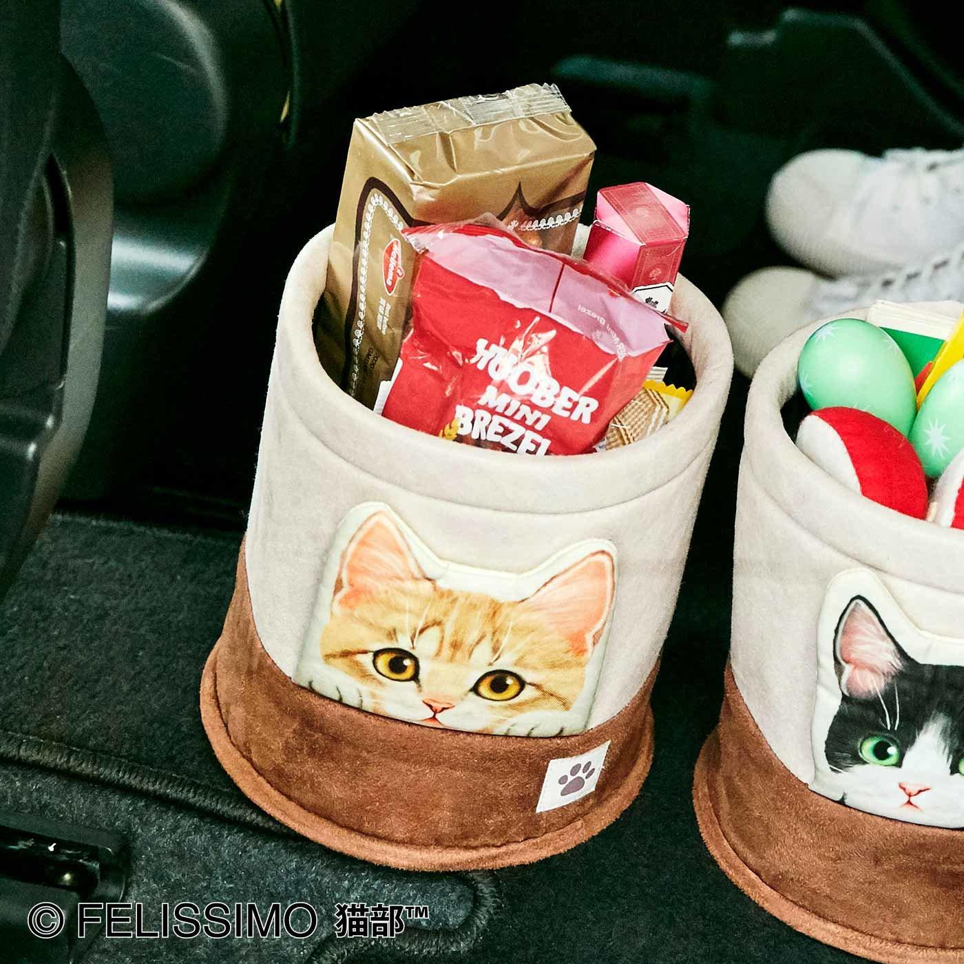 猫が車の中でかくれんぼ マルチボックス〈茶トラ〉