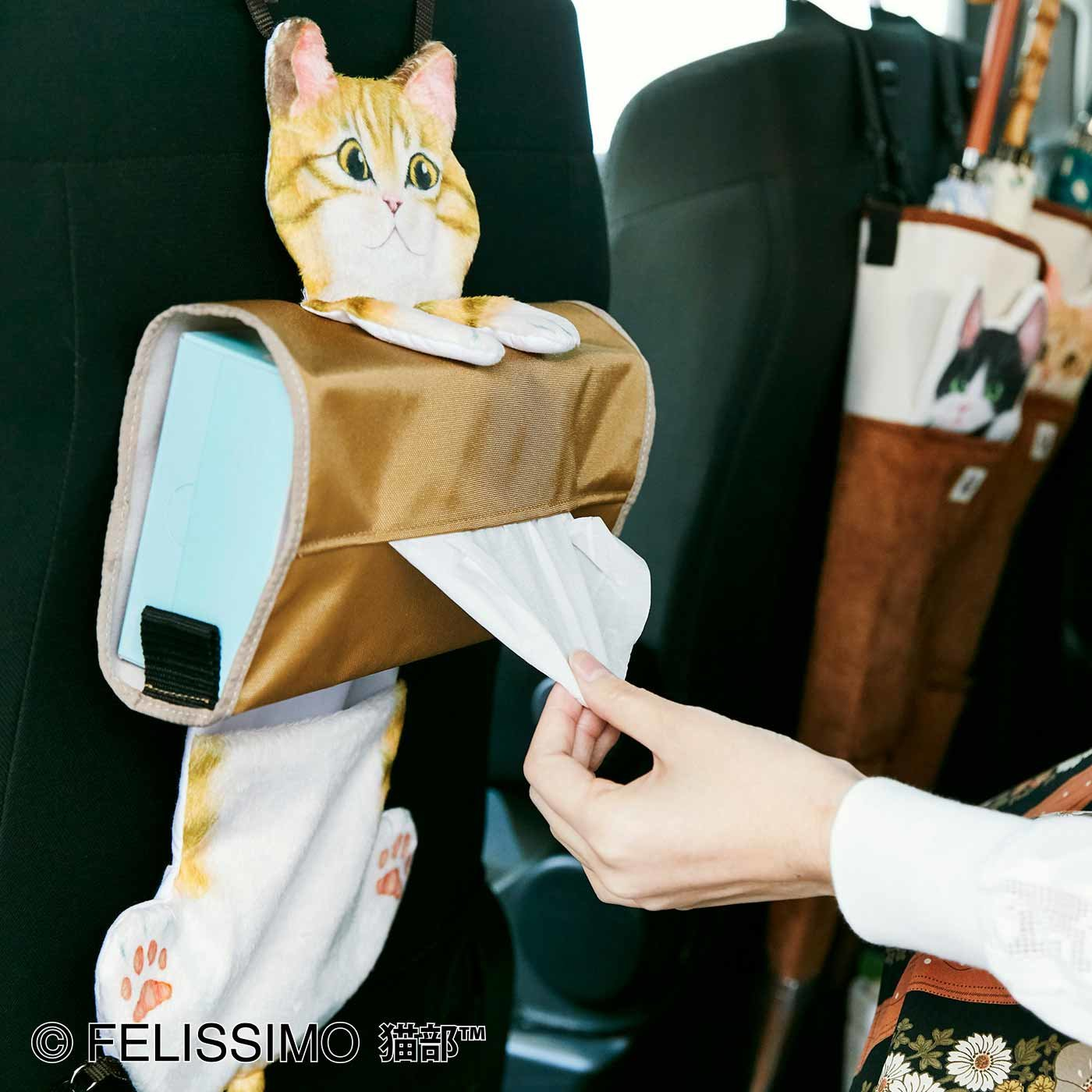 遊びにきたニャ! ぶらさがる猫のティッシュカバーの会