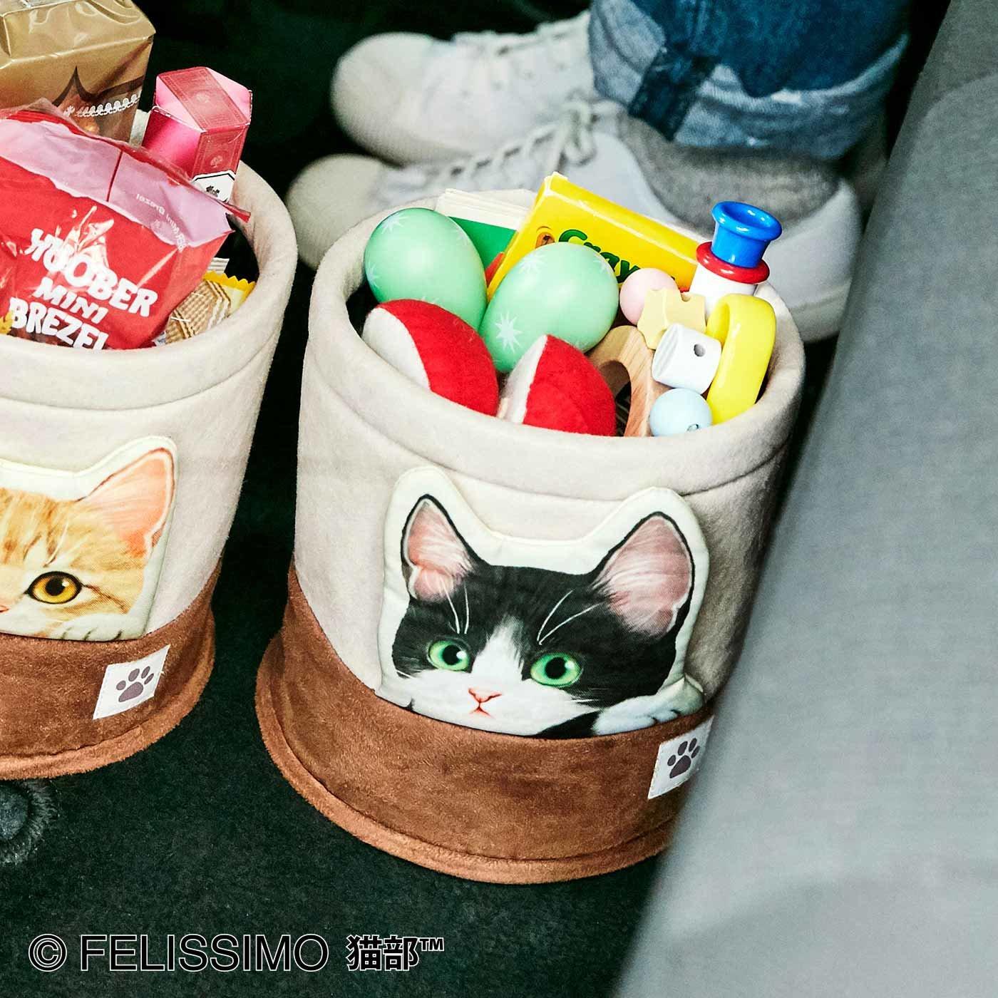 猫が車の中でかくれんぼ マルチボックス〈ハチワレ〉