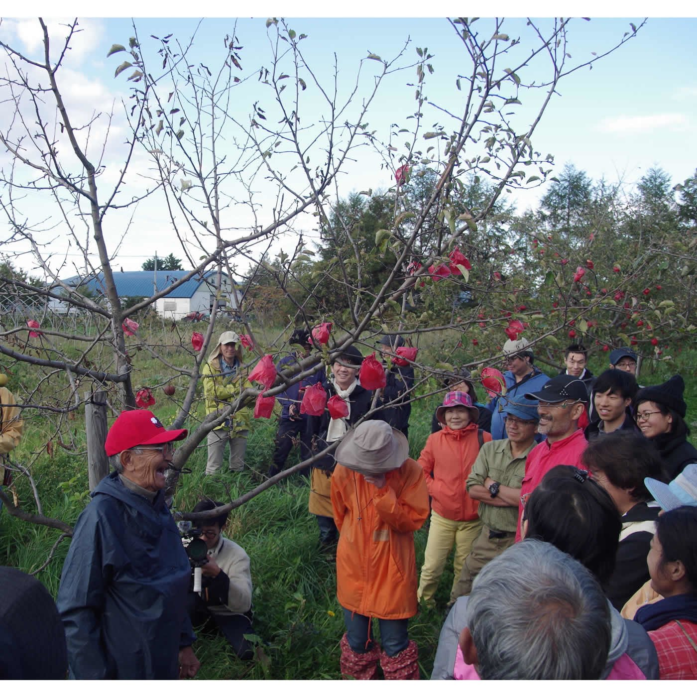 自然栽培農法推進基金