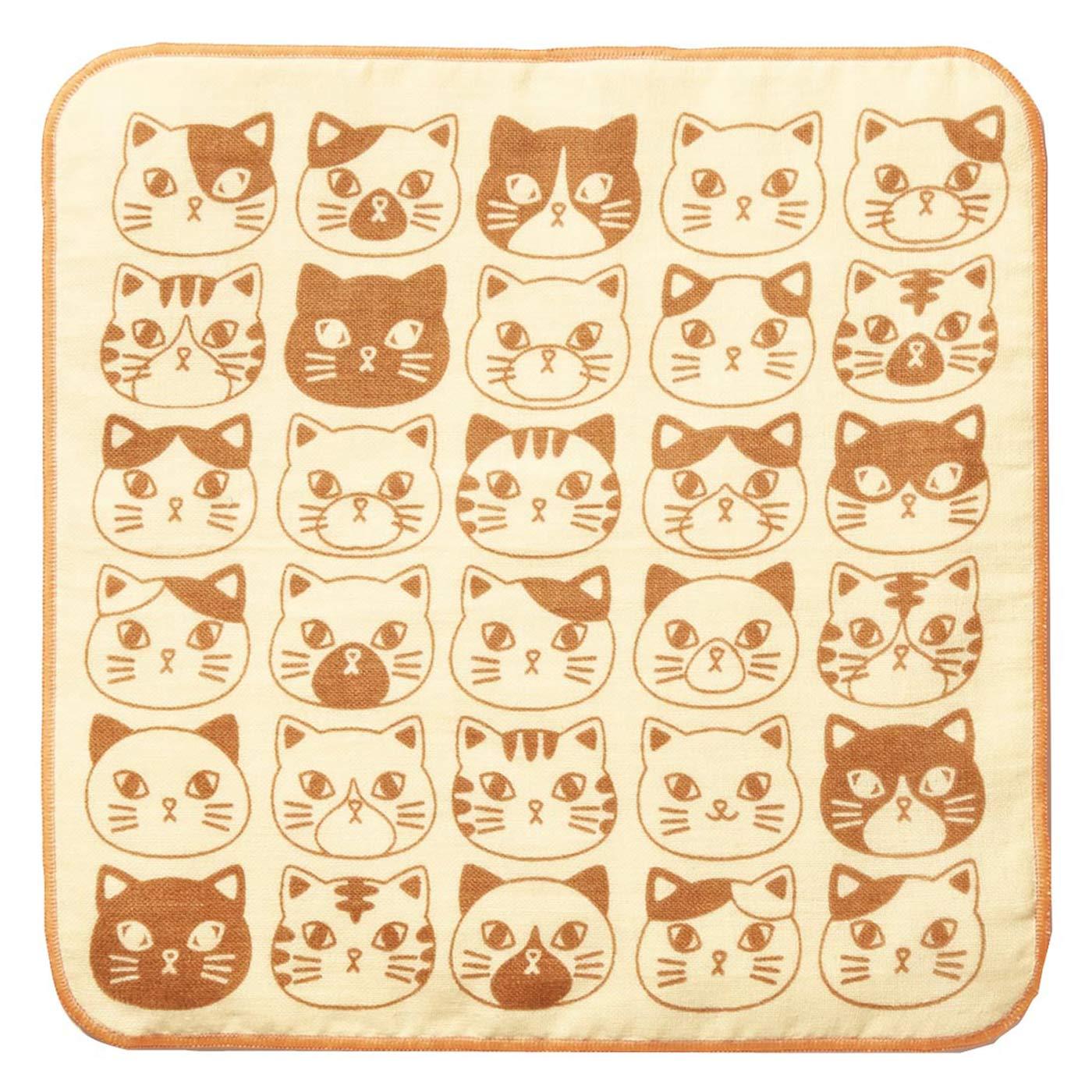 〈オレンジ〉 隠れ上手な猫。この中に1匹だけデレにゃんがいるにゃ! 見つけられるかにゃ?
