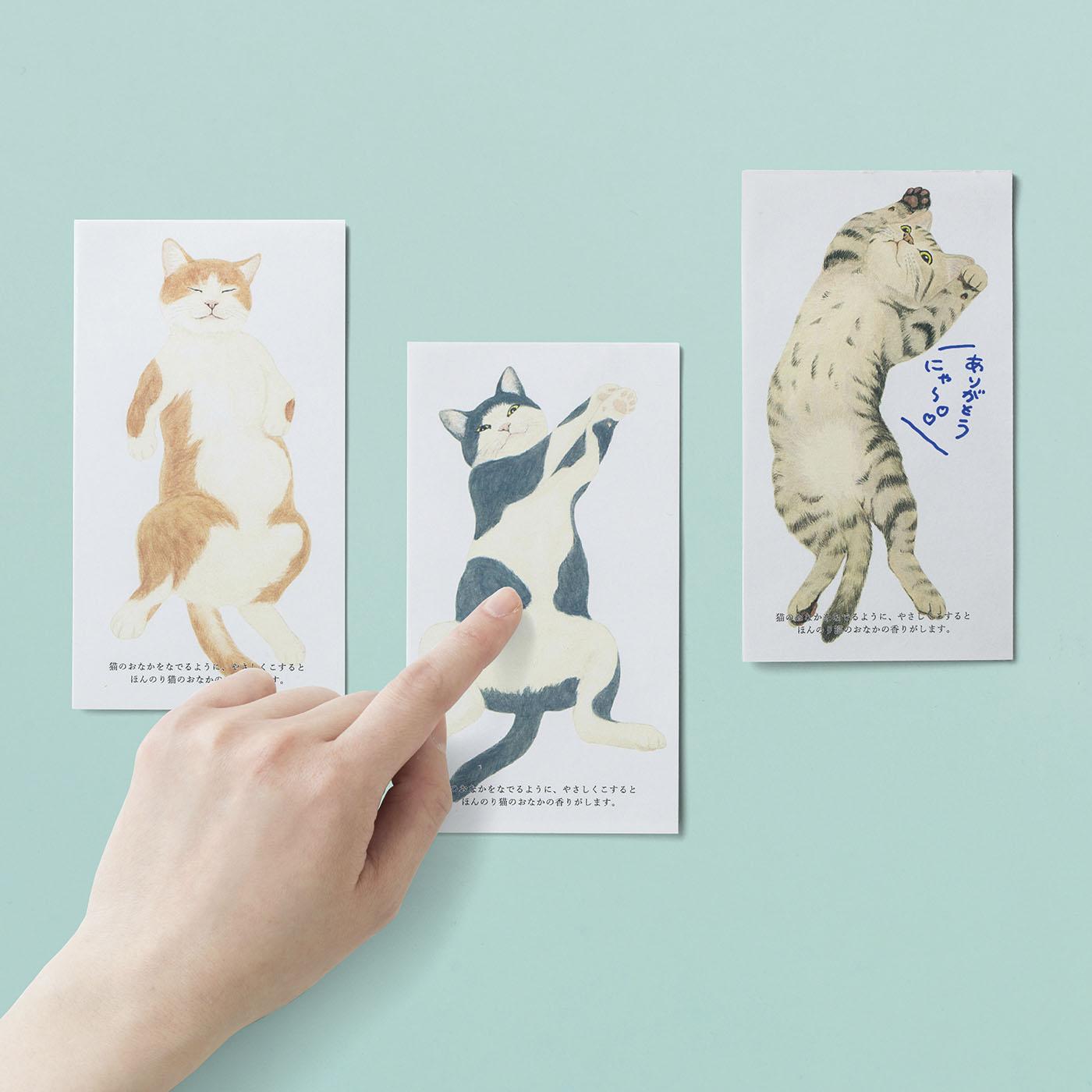 思わずなでなでしたくなる! 無防備におなかを見せる猫のイラストは、茶シロ、ブチ、キジトラの3種。
