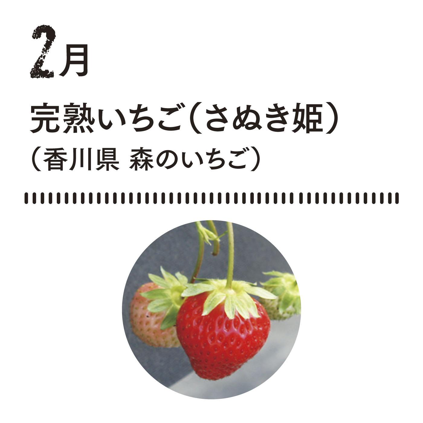 甘さのピーク、夜中の収穫が決め手! 甘さがピークになる夜中にていねいに収穫する星摘みいちごです。■お届け時期 2月上〜中旬 約350g(15粒)