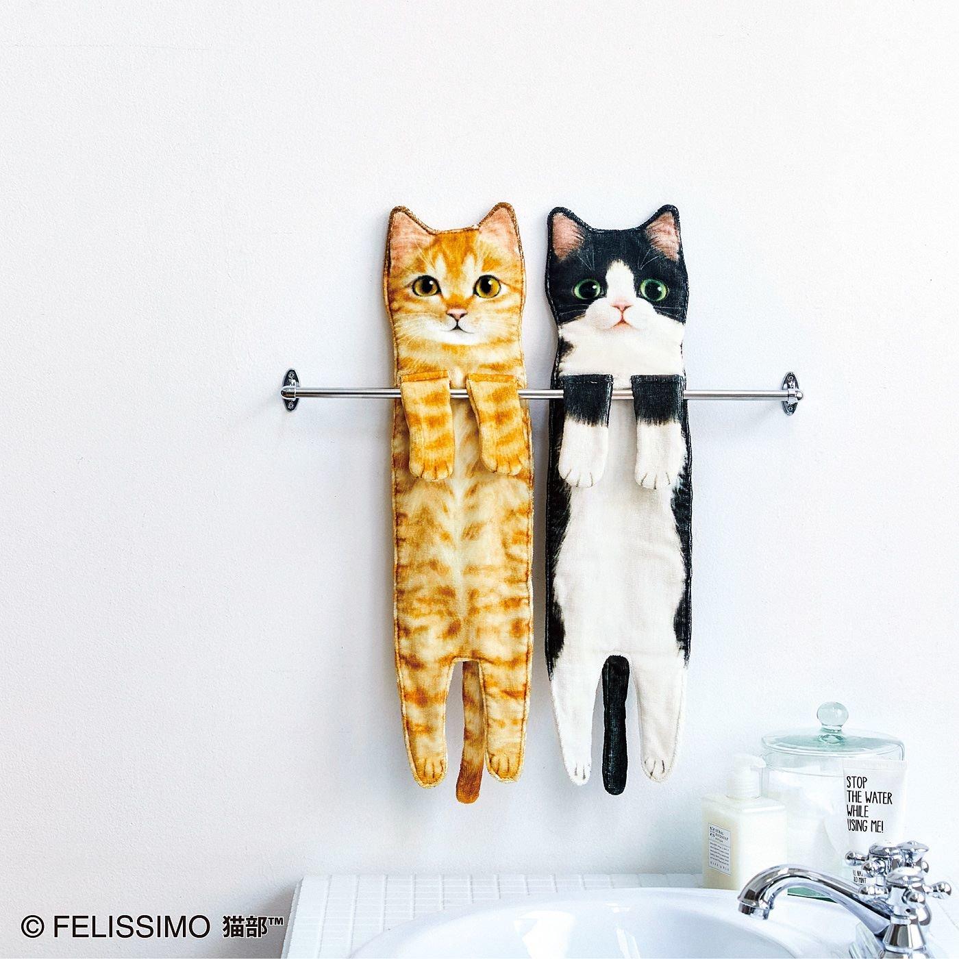 こんなに伸びるの!?なが~い猫タオルの会