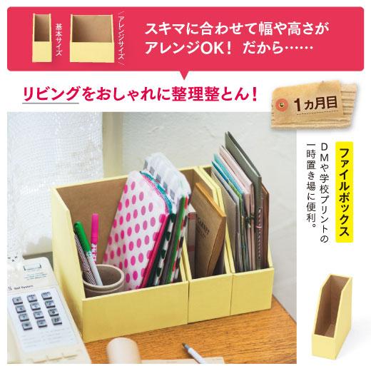 1ヵ月目 ファイルボックス リビングをおしゃれに整理整とん!