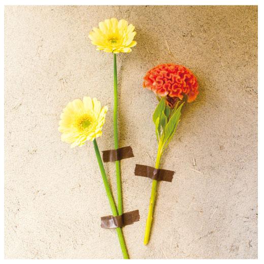 壁にお花を飾るだけでグンとセンスUP。こんな技も学べます。