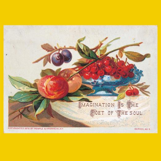 テーマ:Seasonal fruits [季節を彩る果実] ※お届けするカードの一例です