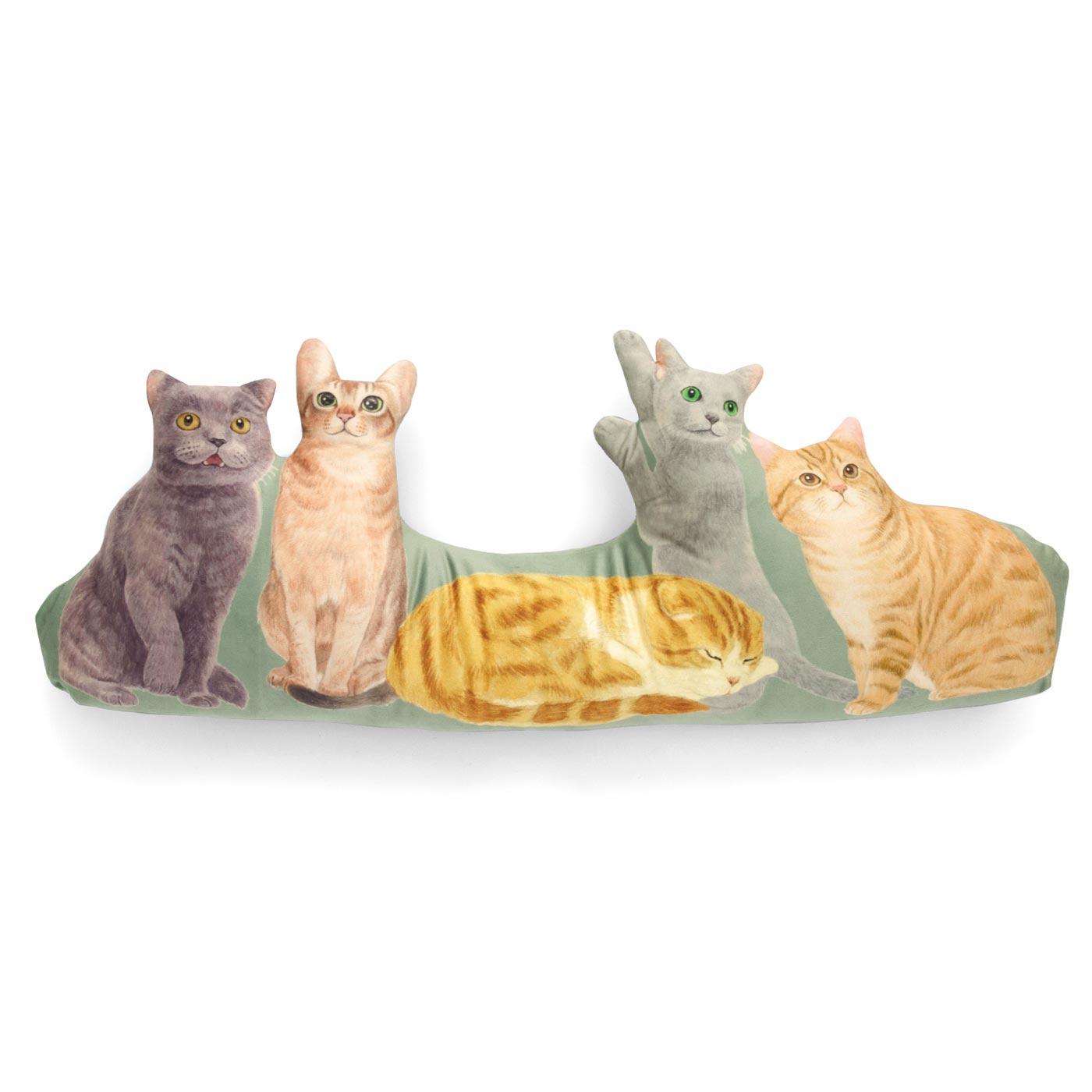気品漂うヨーロッパ猫(左からブリティッシュショートヘア・アビシニアン・スコティッシュフォールド・ロシアンブルー・マンクス)