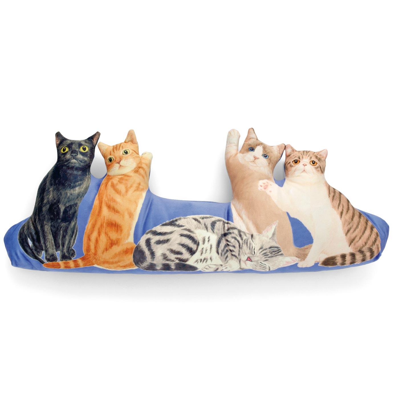 キュートなアメリカ猫(左からボンベイ・マンチカン・アメリカンショートヘア・ラグドール・エキゾティック)