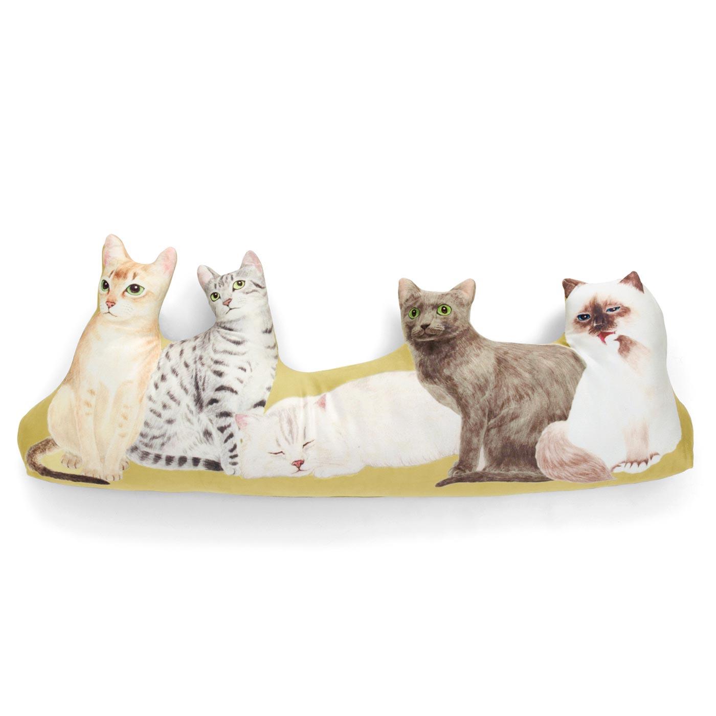 エキゾティックなアジア・中東猫(左からシンガプーラ・エジプシャンマウ・ペルシャ・コラット・バーマン)